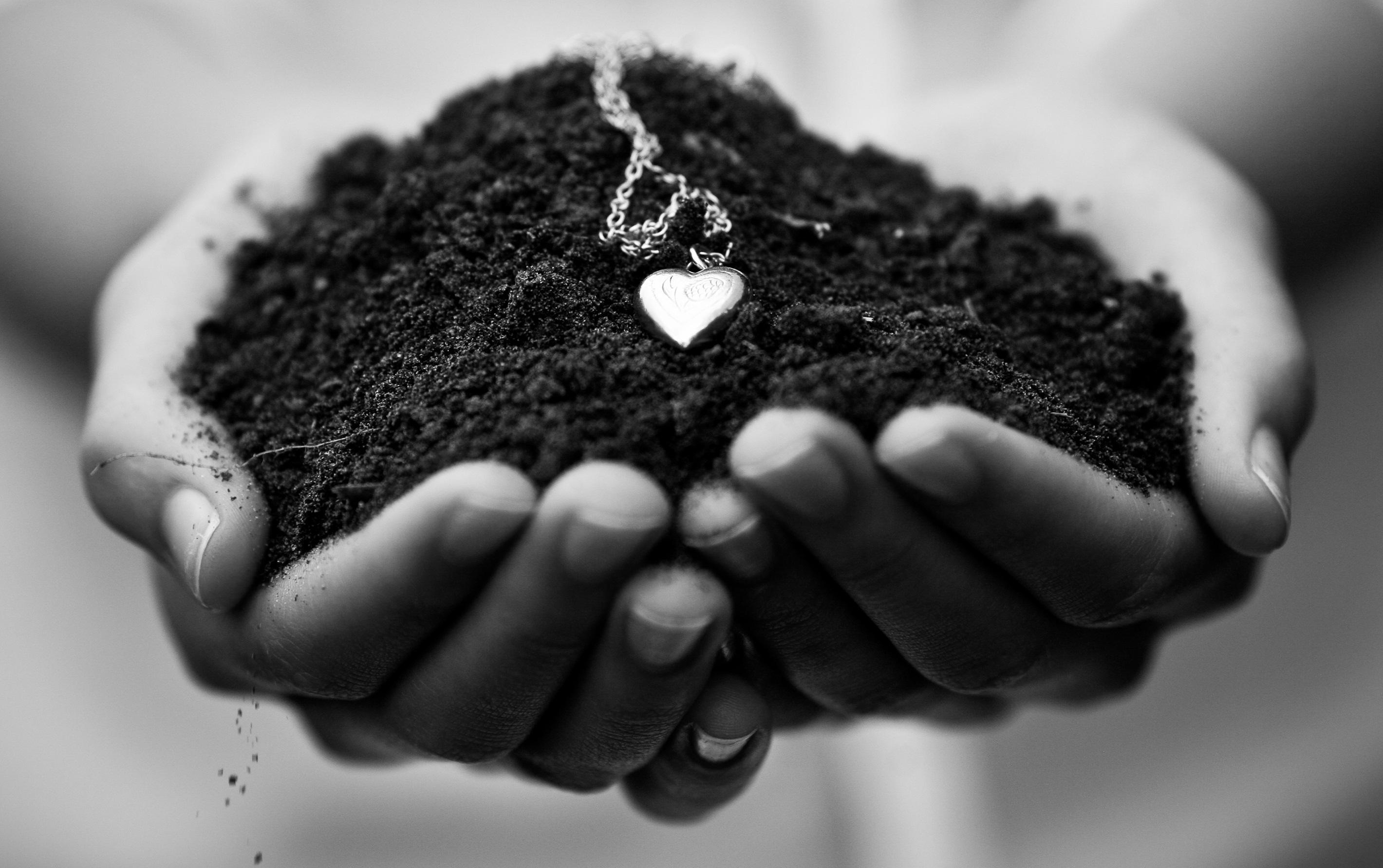 Сердце земли загрузить