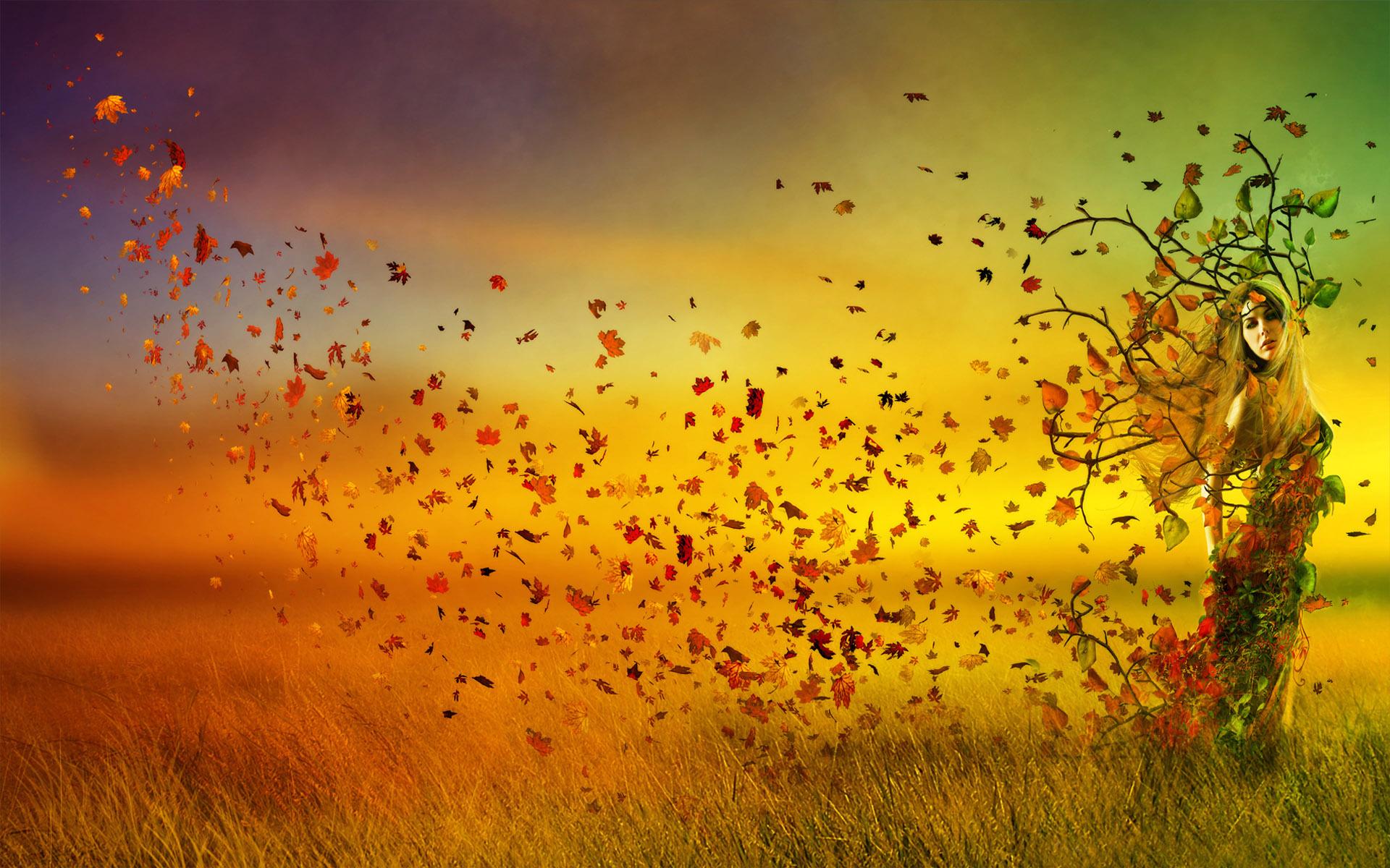 А ветер рвет листья и гонит куда-то