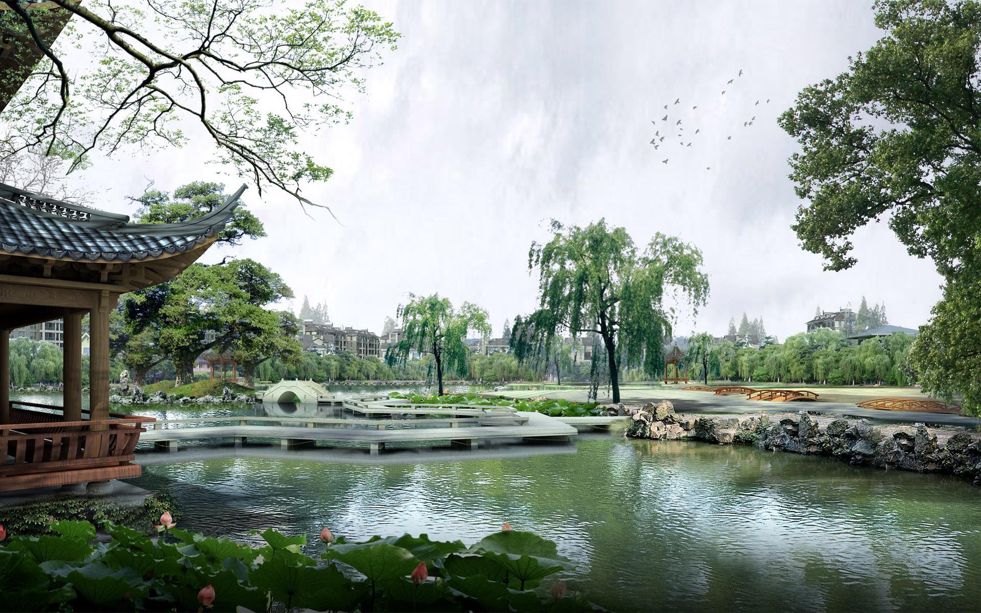 xinhua china anhui laian pond cypress scenery scenery - HD2560×1600