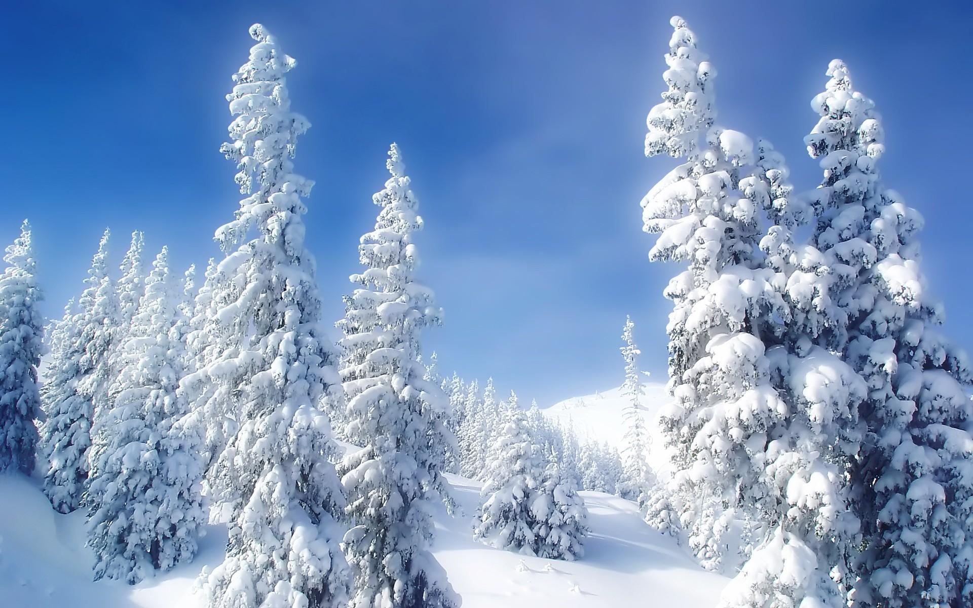 Обои зима анимация, картинки