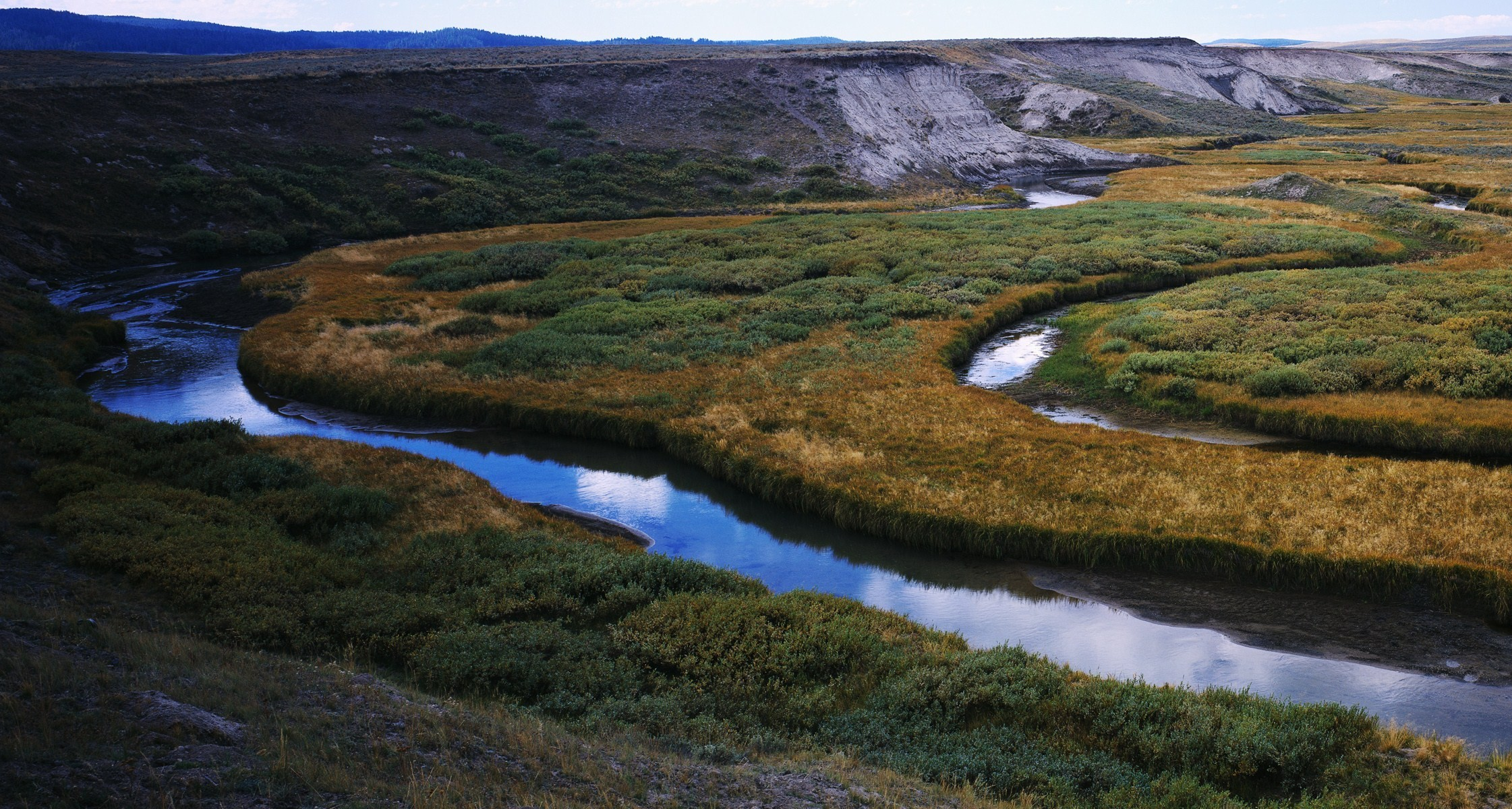 Разветвляющаяся река загрузить