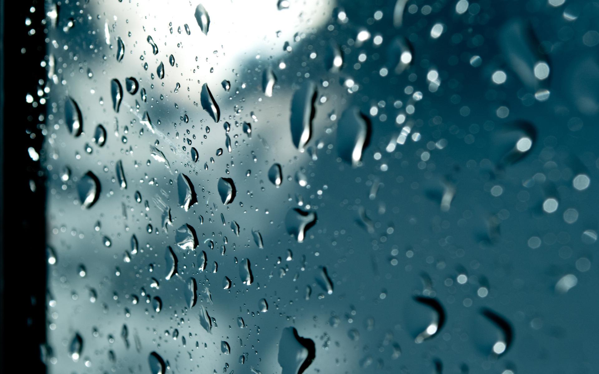 чашка пар капли вода дождь стекло Cup couples drops water the rain glass без смс