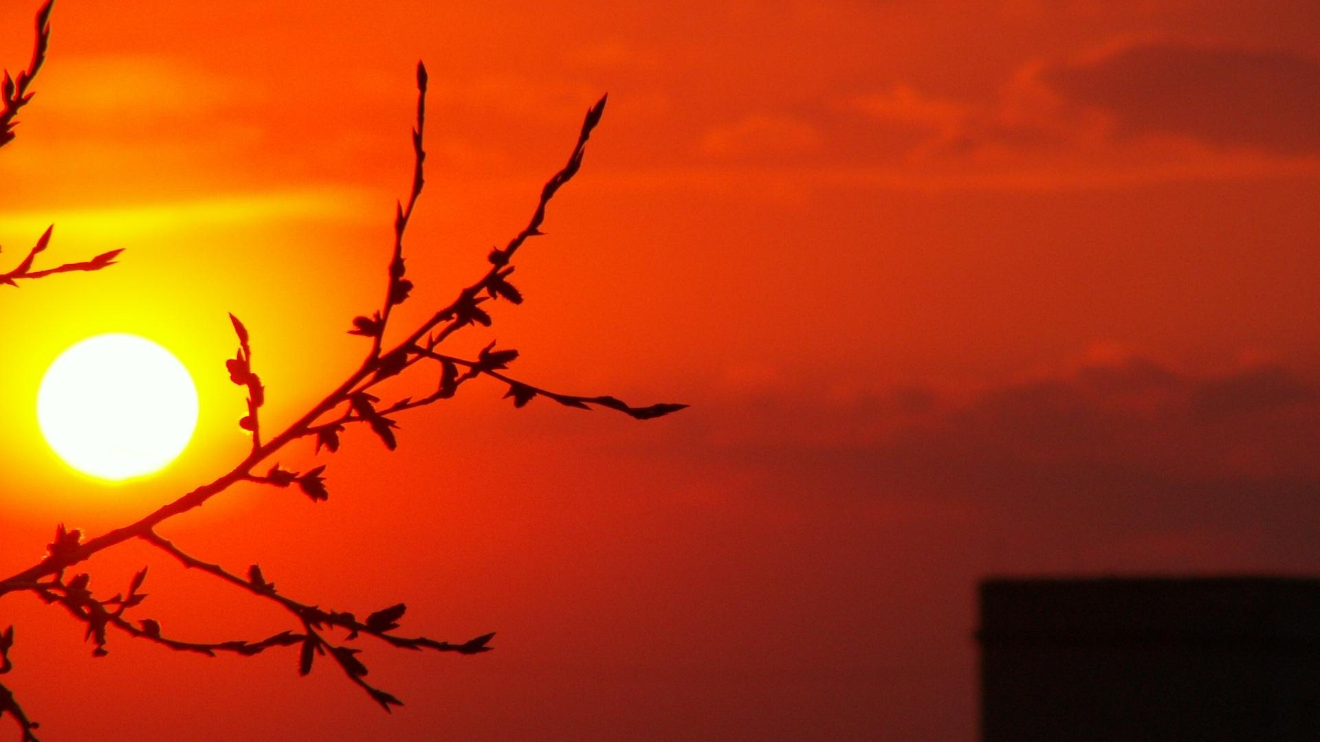 Красные лучи заката скачать