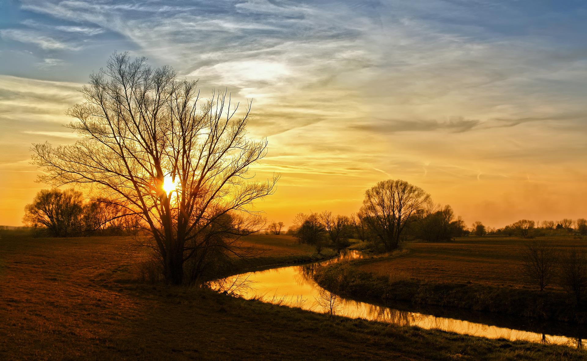 природа рассвет деревья  № 1158251 бесплатно