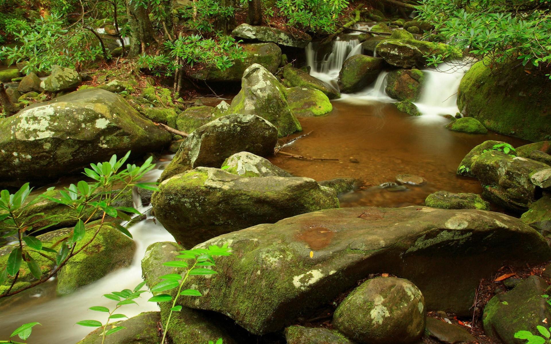 Домик сад камушки ручей загрузить