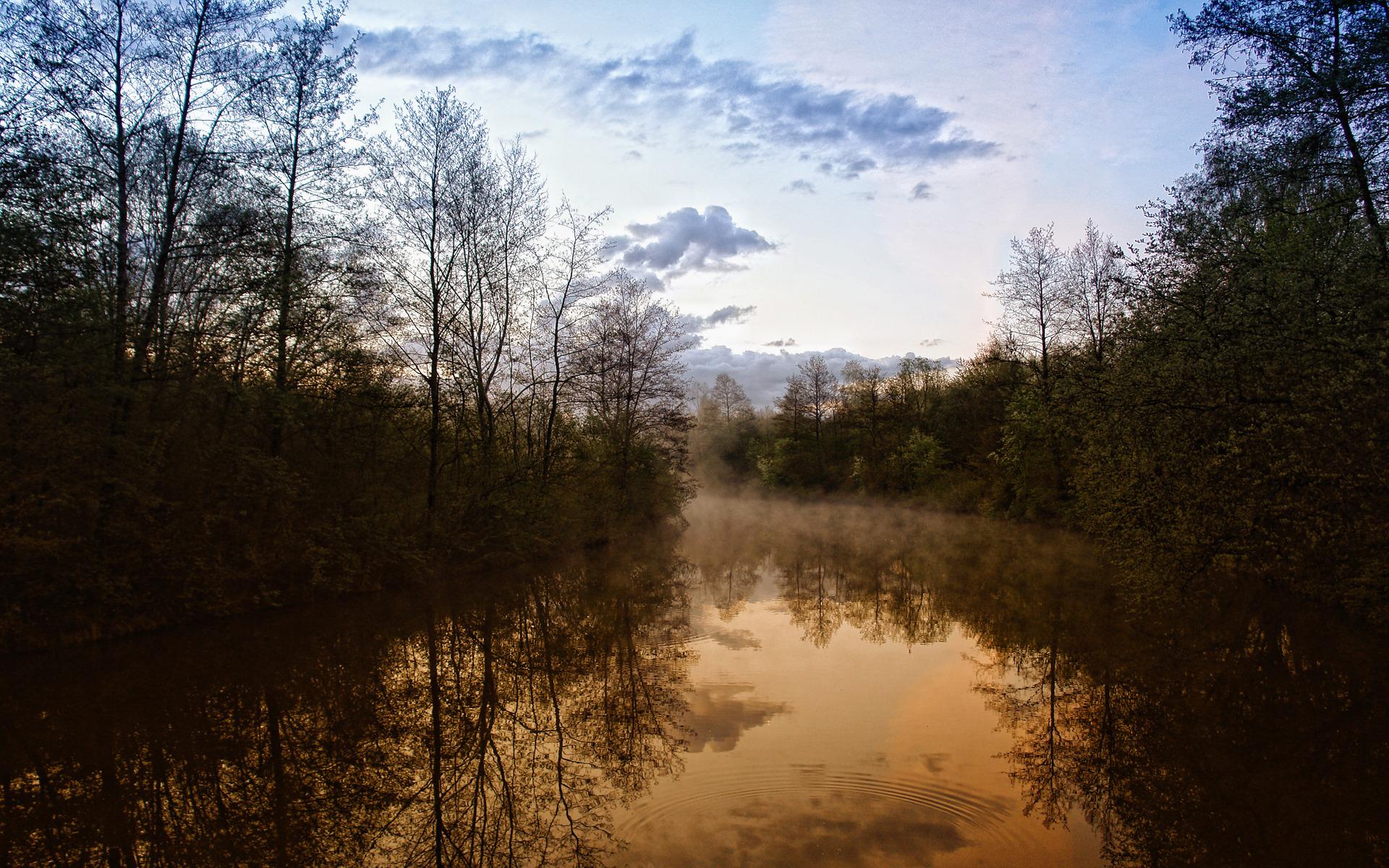 Туман над лесной речкой  № 636717 без смс