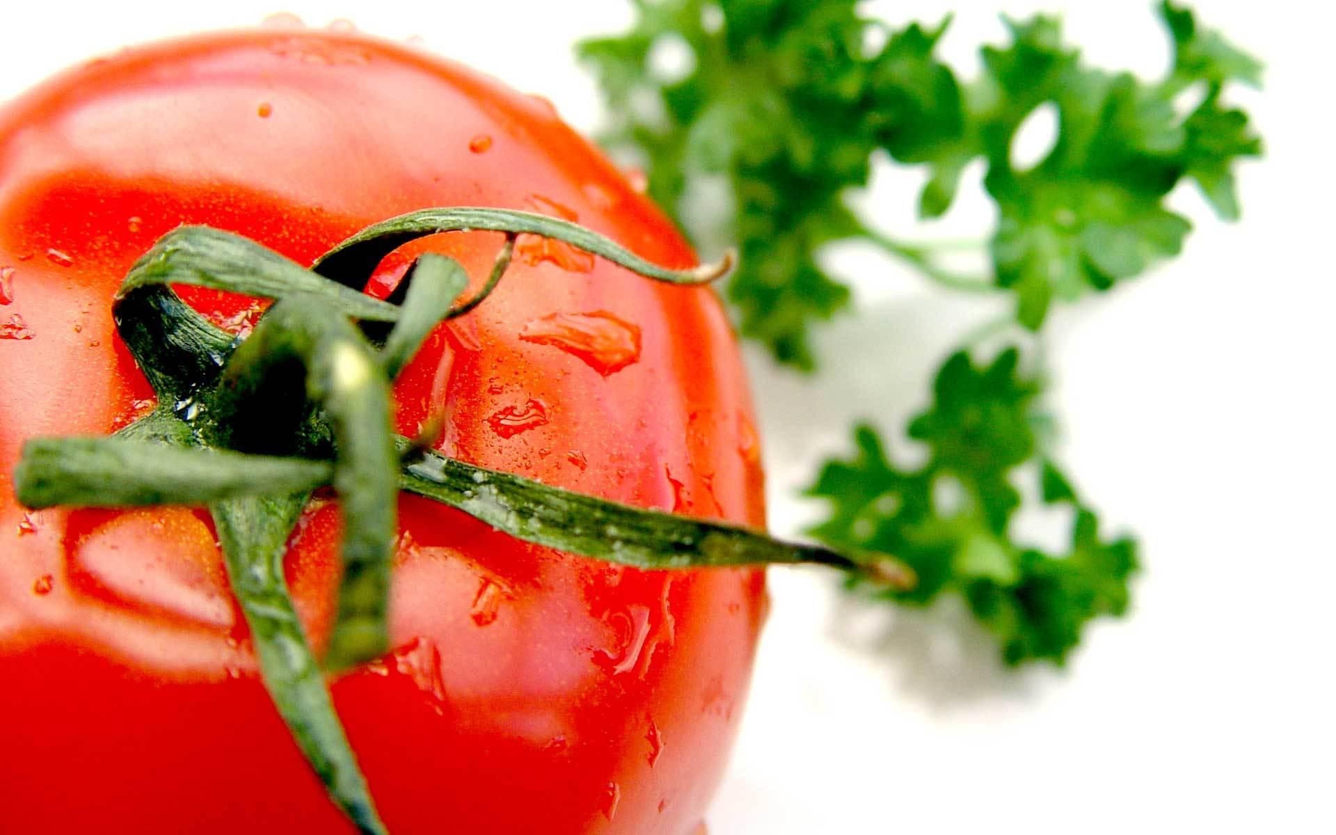 Рыба помидоры загрузить