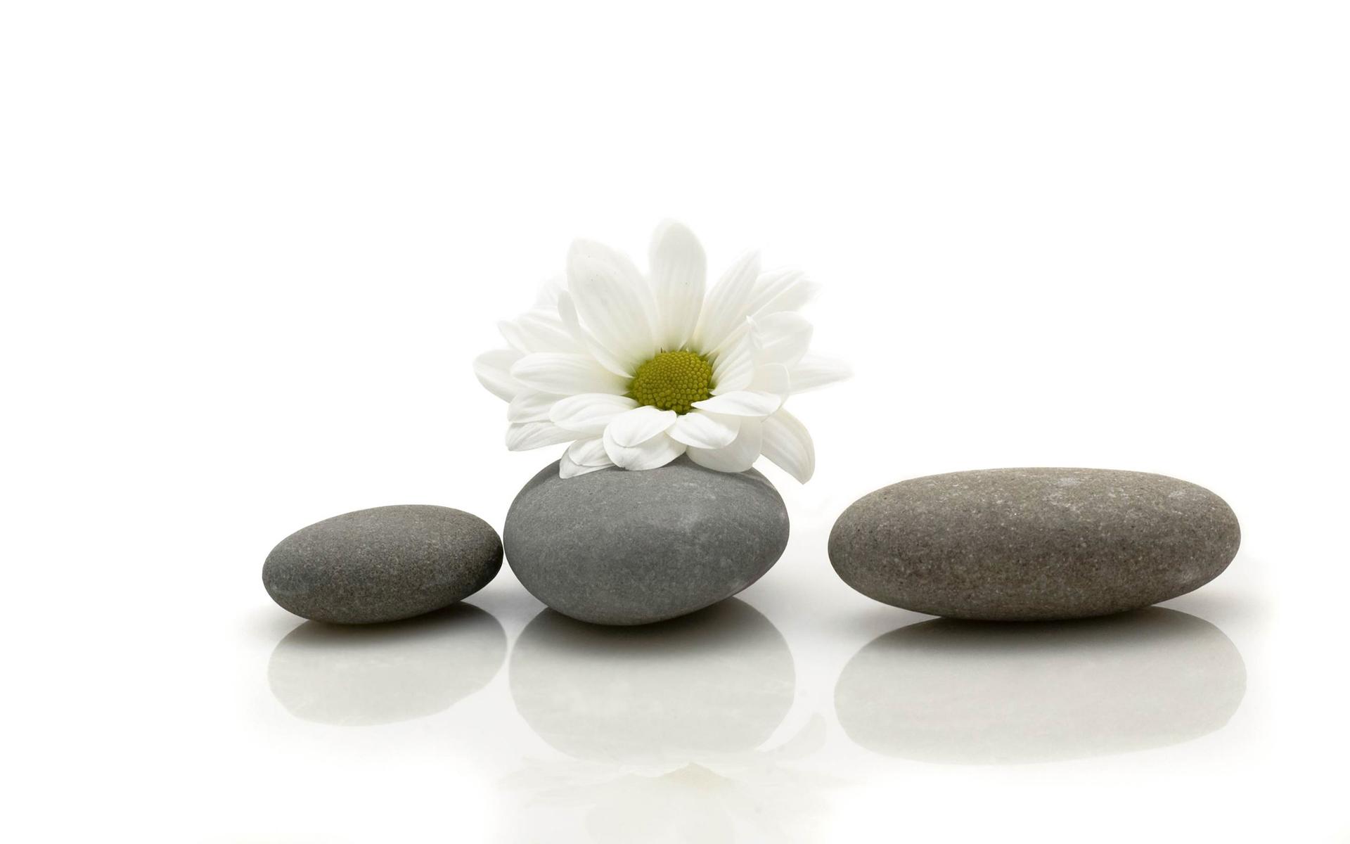 Stones