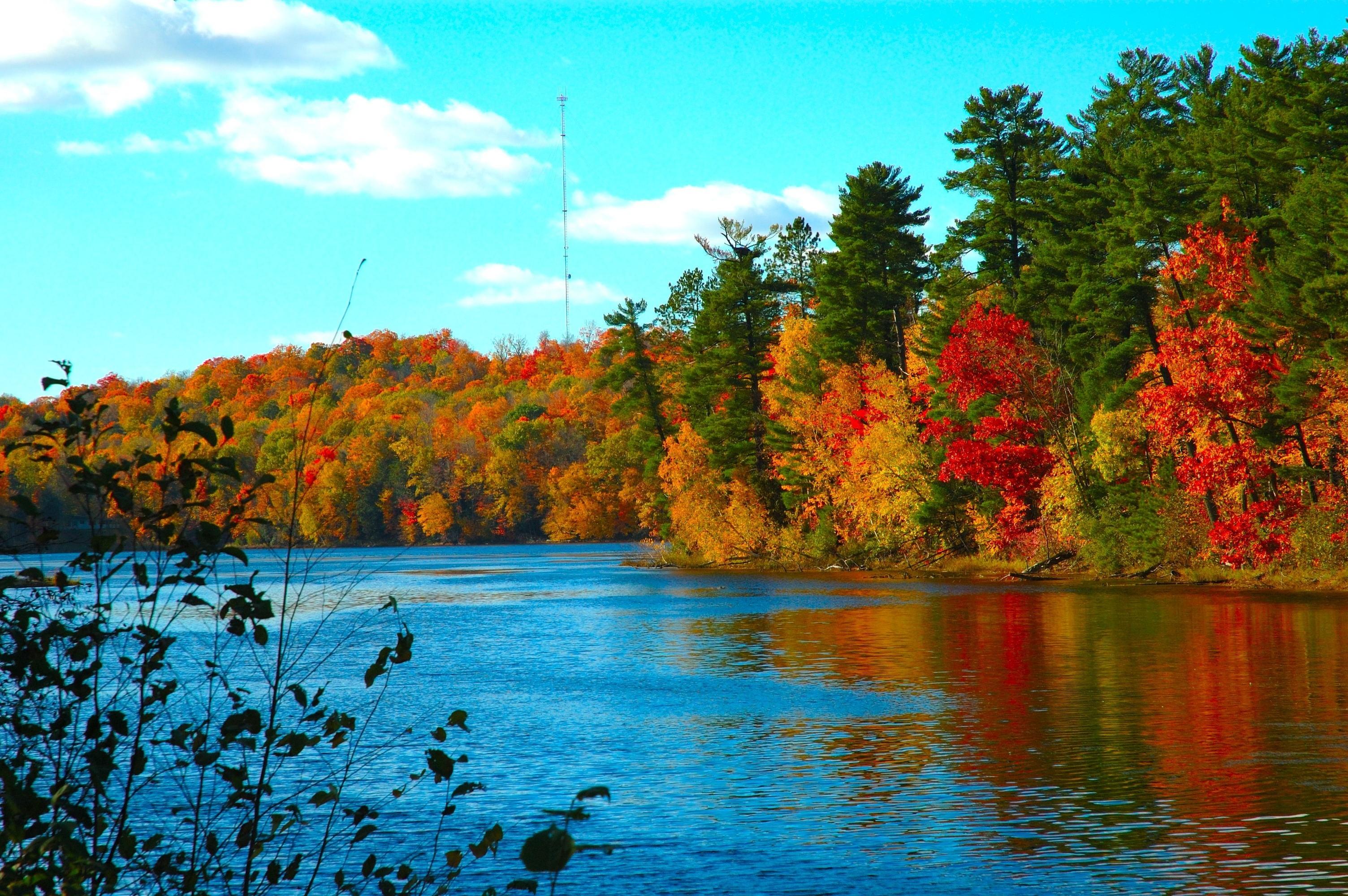 вода озеро осень water the lake autumn  № 1155956 бесплатно