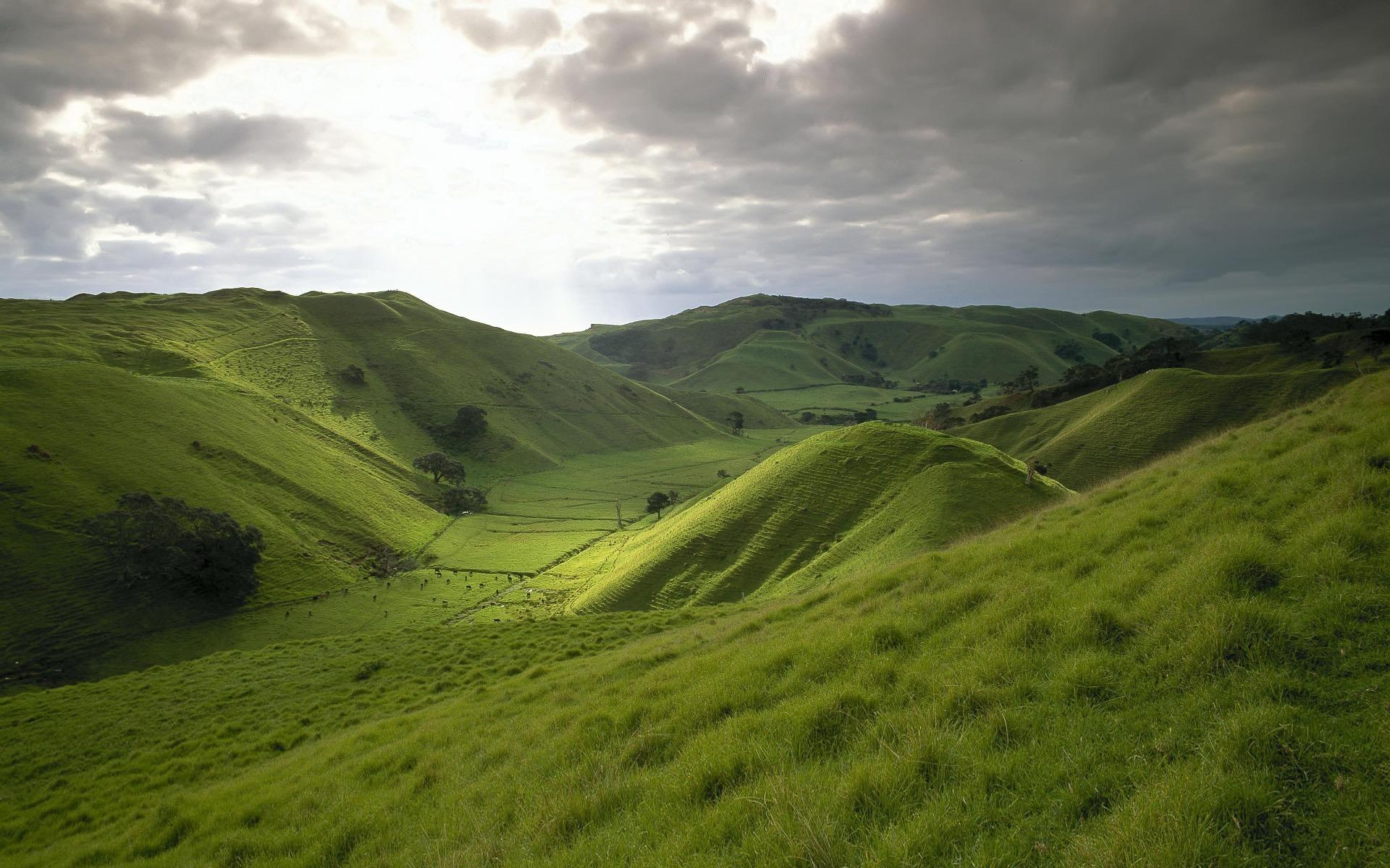 вас готовы картинка зеленые холмы самое главное личного