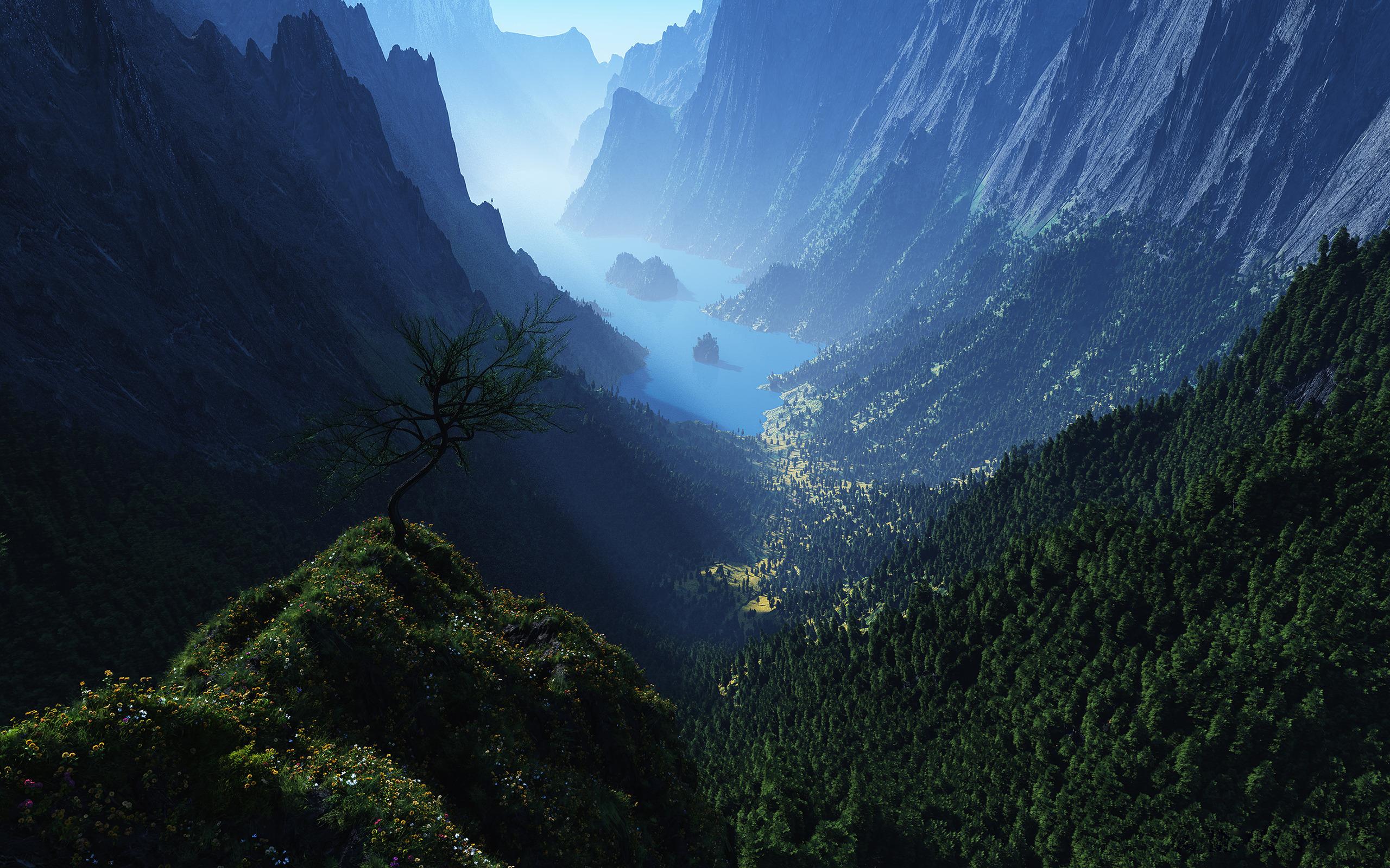 Гора озера зелень леса с высоты скачать