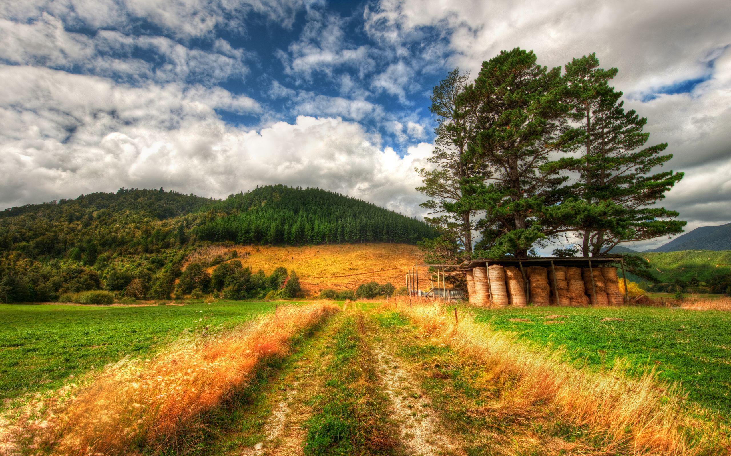 горы поле трава ручей дорога скачать