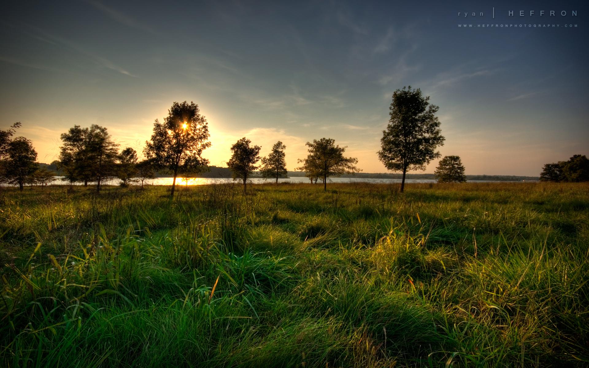 закат, деревья, зелень бесплатно