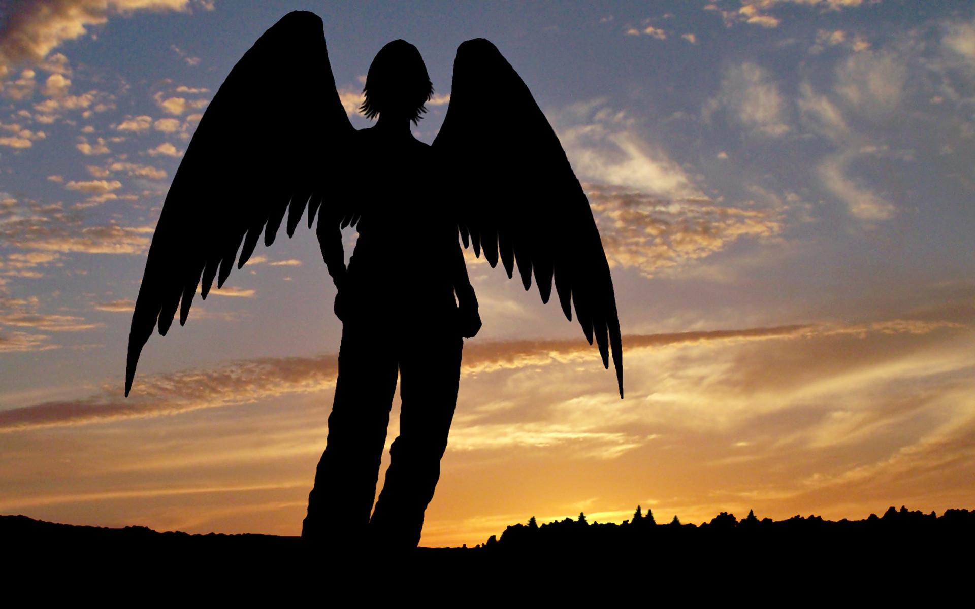 картинки для аватар ангел хорошо, что остальные