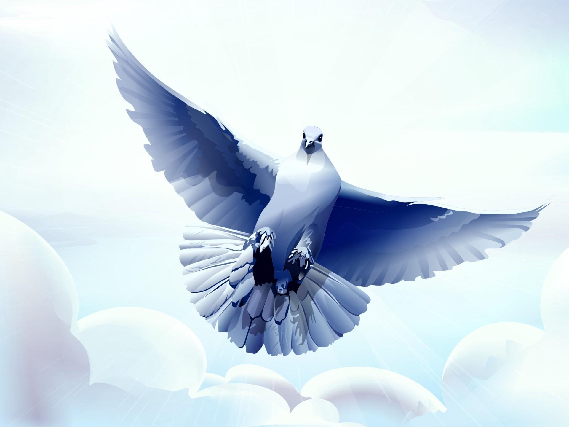 Открытки про голубей, месяцами отношений