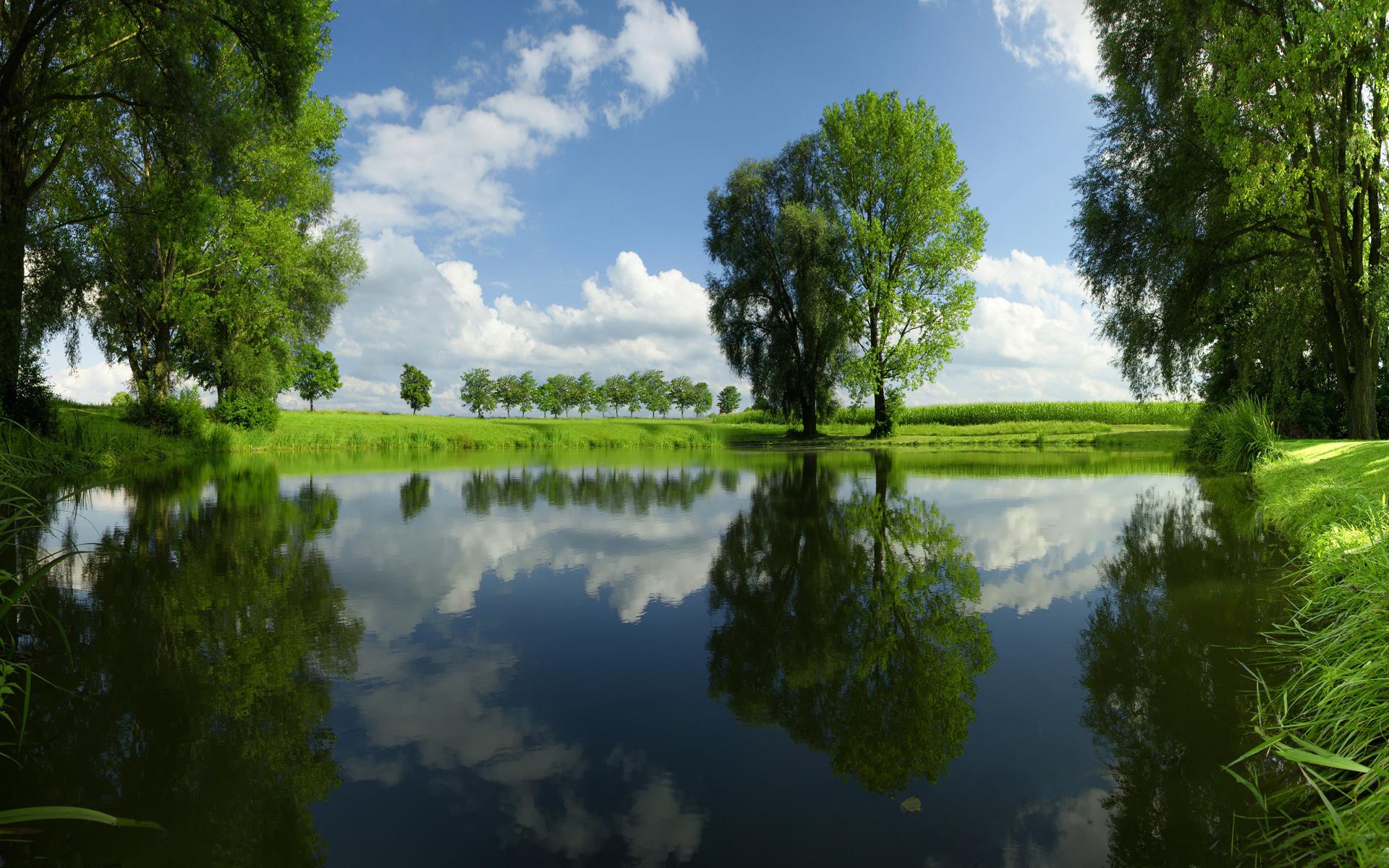 природа деревья небо река дома  № 571431  скачать