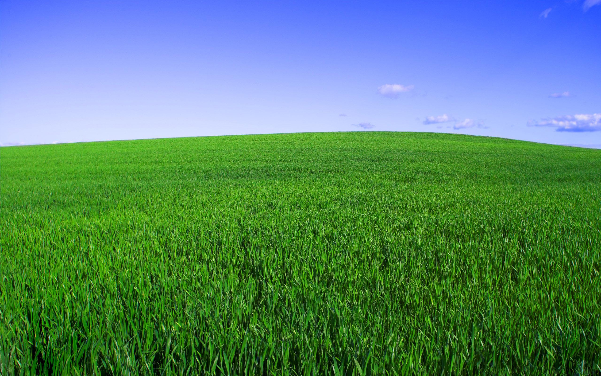 the field 今低-今高 今开盘 昨收盘.