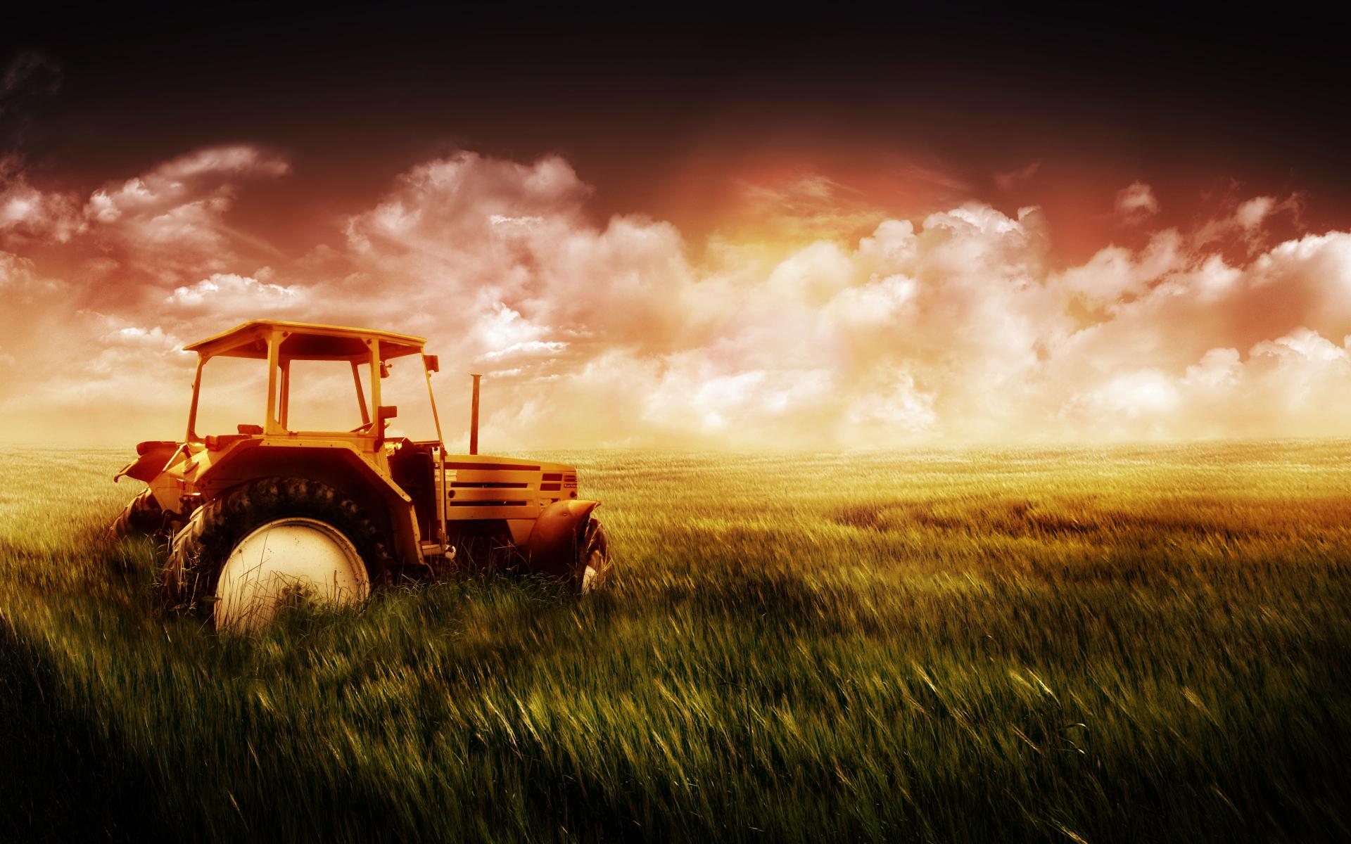 Старый автомобиль в поле  № 2341330  скачать