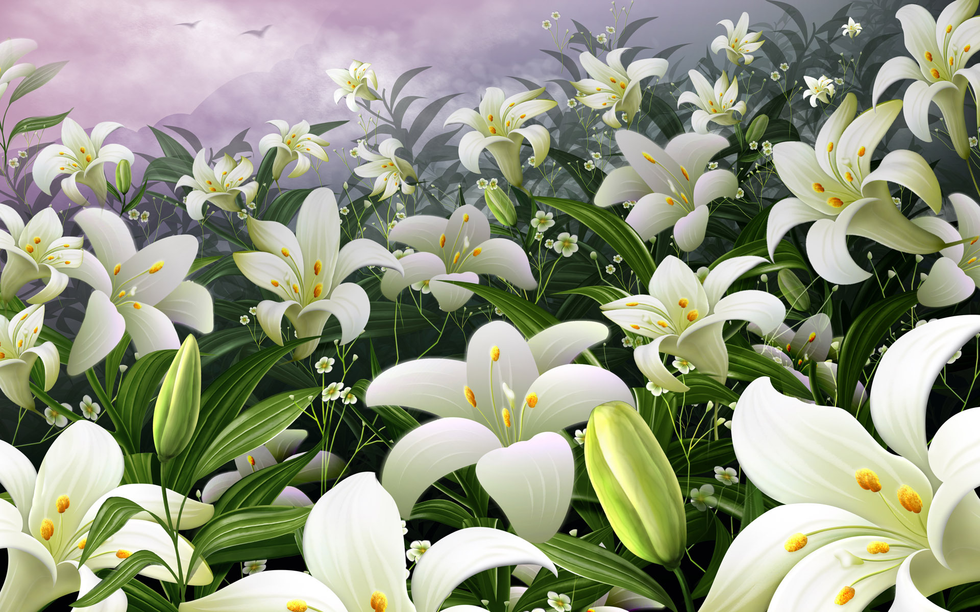 Белые лилии картинки красивые, мальчику