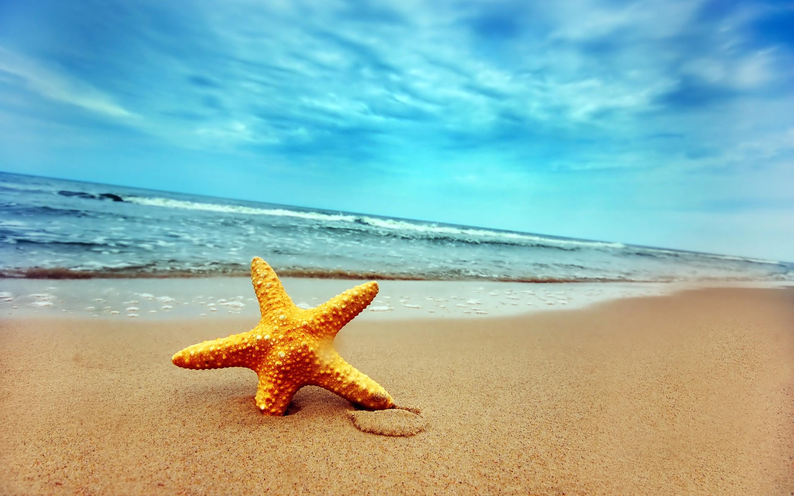 Открытки берега, давай жить дружно