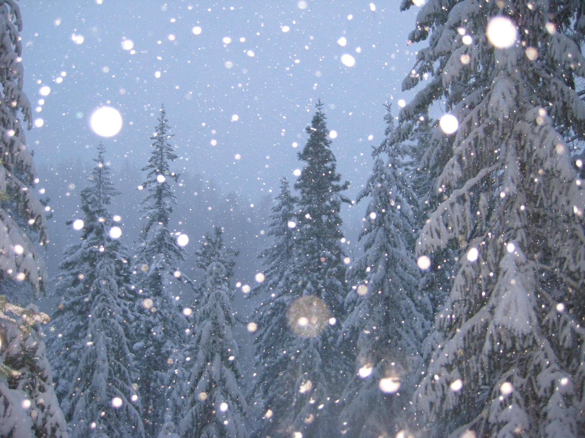 Вы окружены мудаками только с трёх сторон (с) виа пламя: снег кружится http://wwwyoutubecom/watch_popup?v=f4