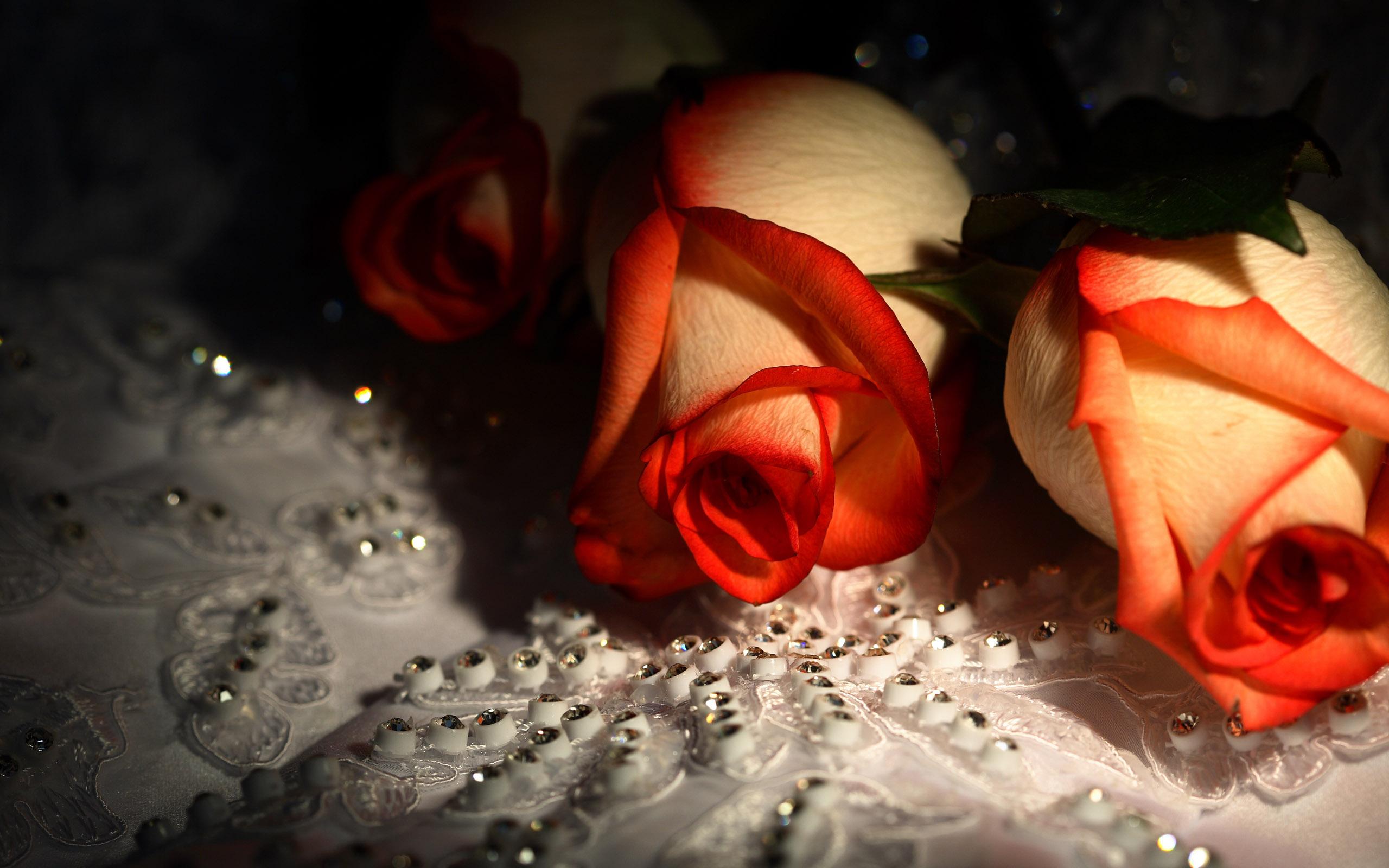 Очаровашка с розой загрузить