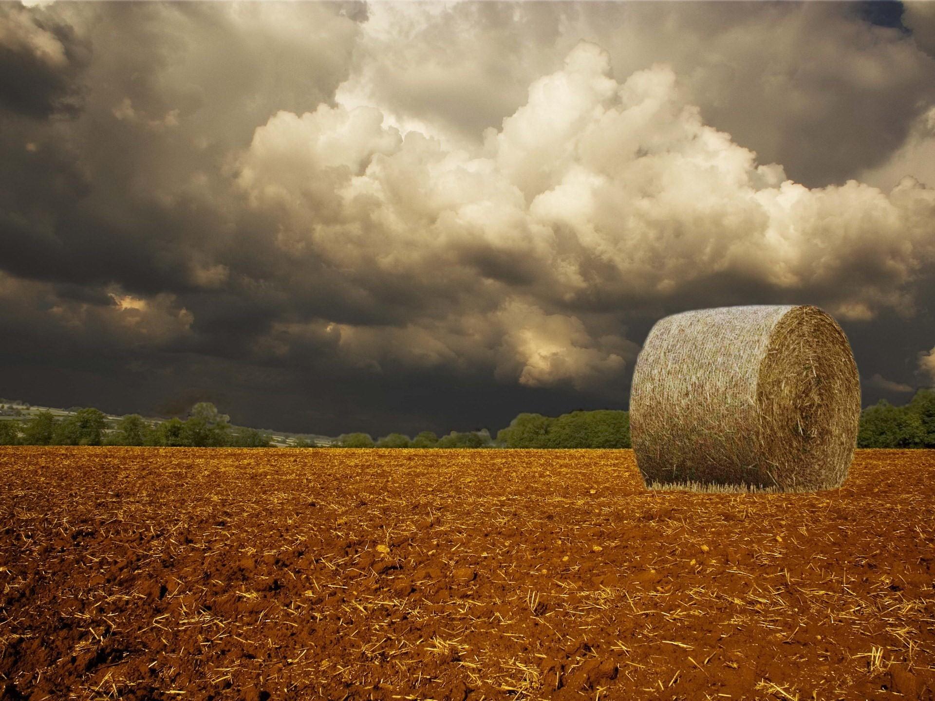 поле солома стога горы горизонт без смс