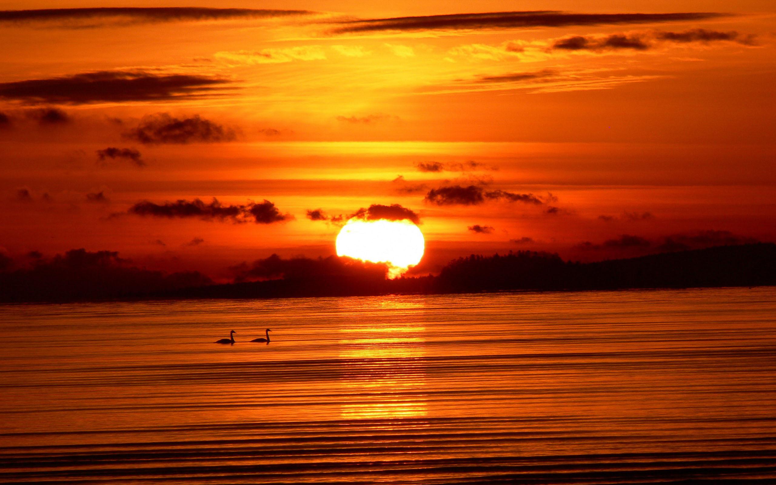 Открытки с закатом солнца