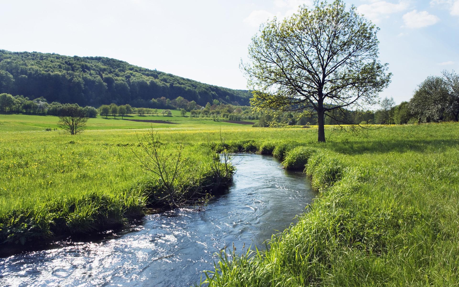 горы поле трава ручей дорога без смс