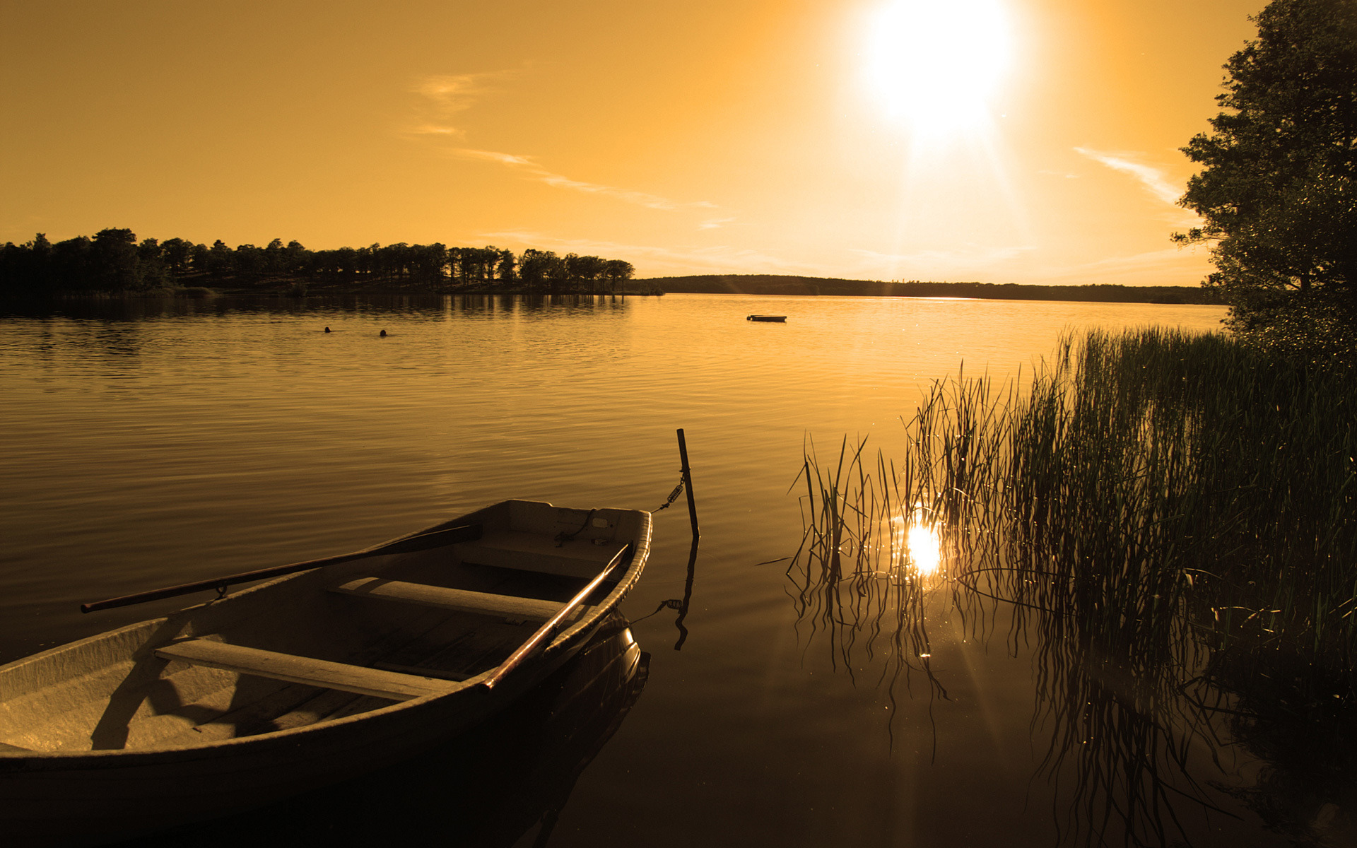 озеро в лесу на закате  № 380248  скачать