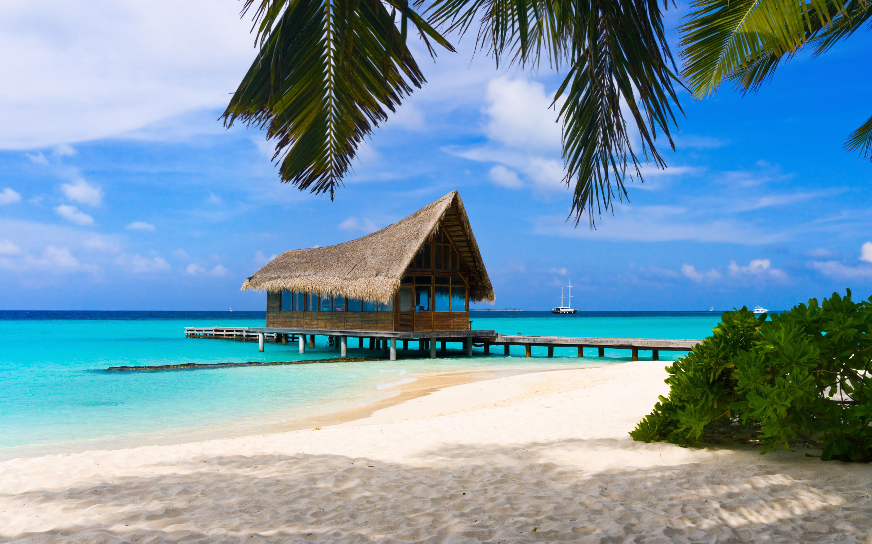 Открытки пляжа и моря