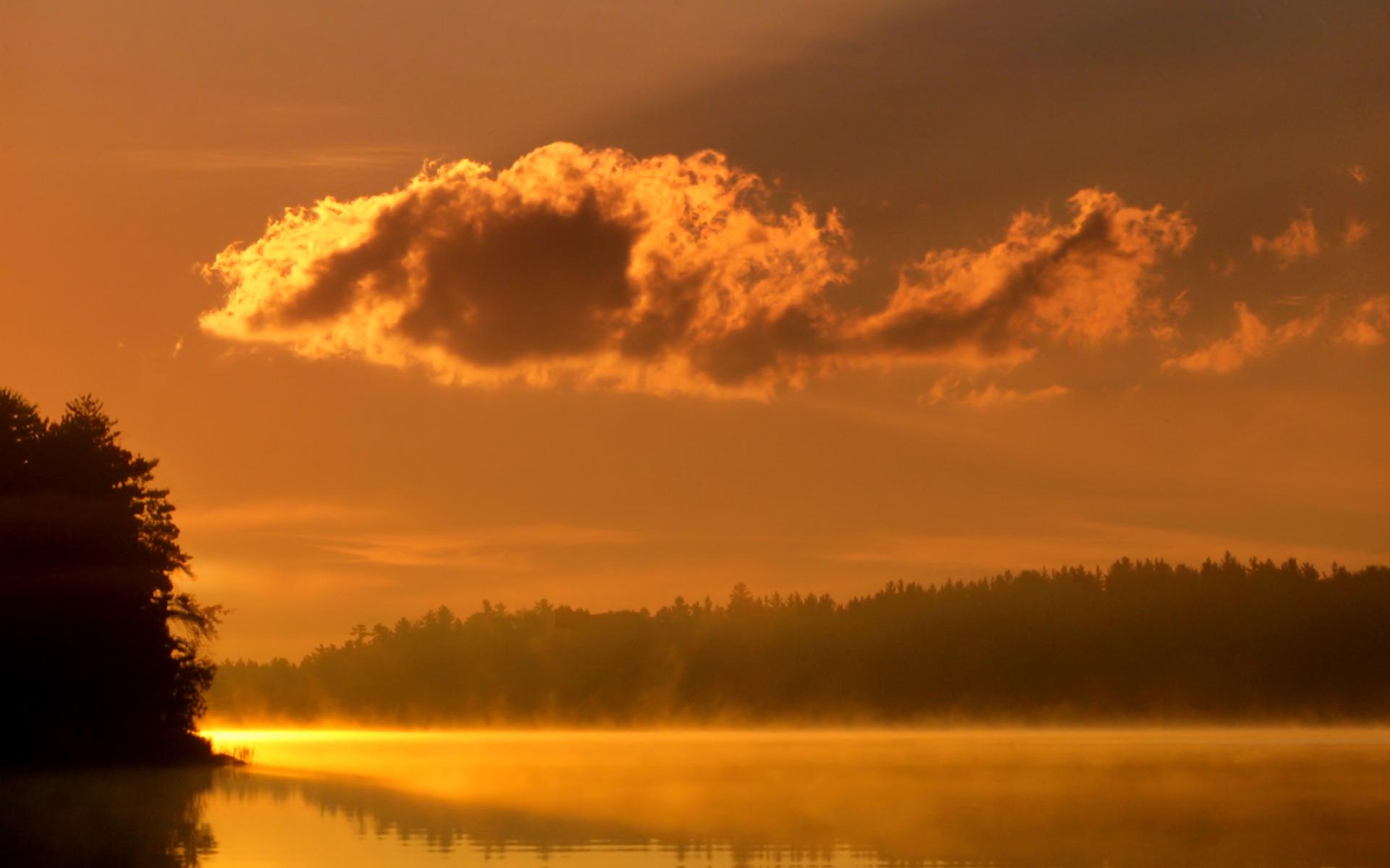 Закат в тумане в лесу  № 1140070 загрузить