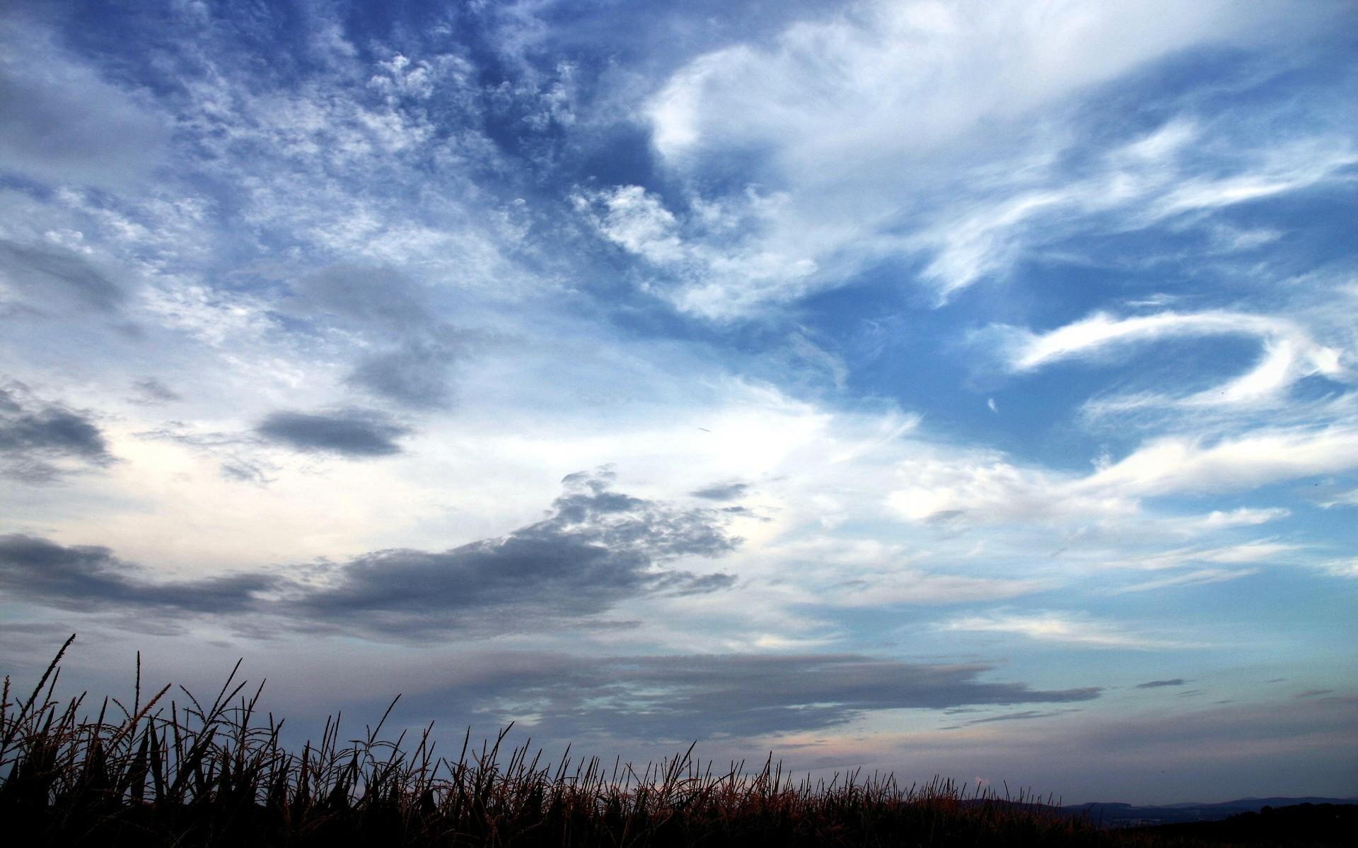 тревожное небо  № 154164  скачать