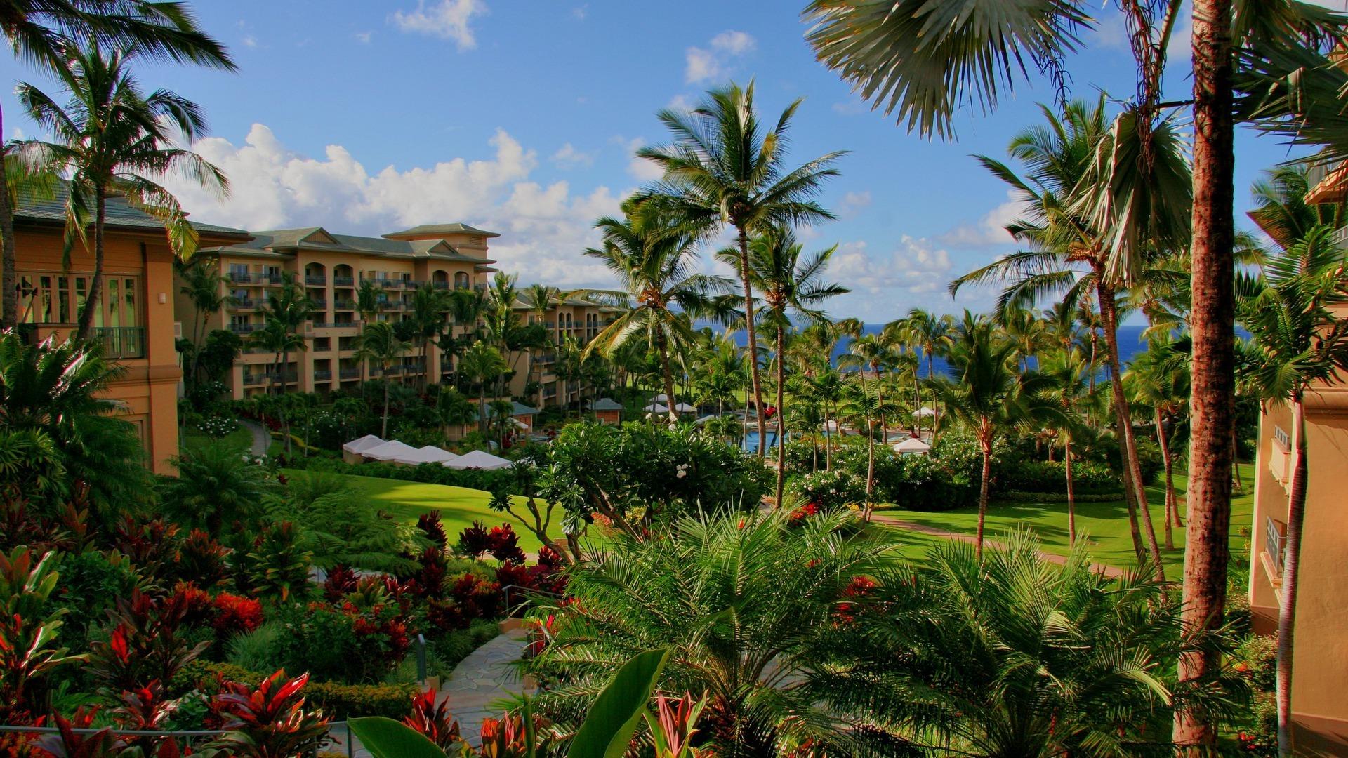 Отель апартаменты пальмы  № 3705527 загрузить