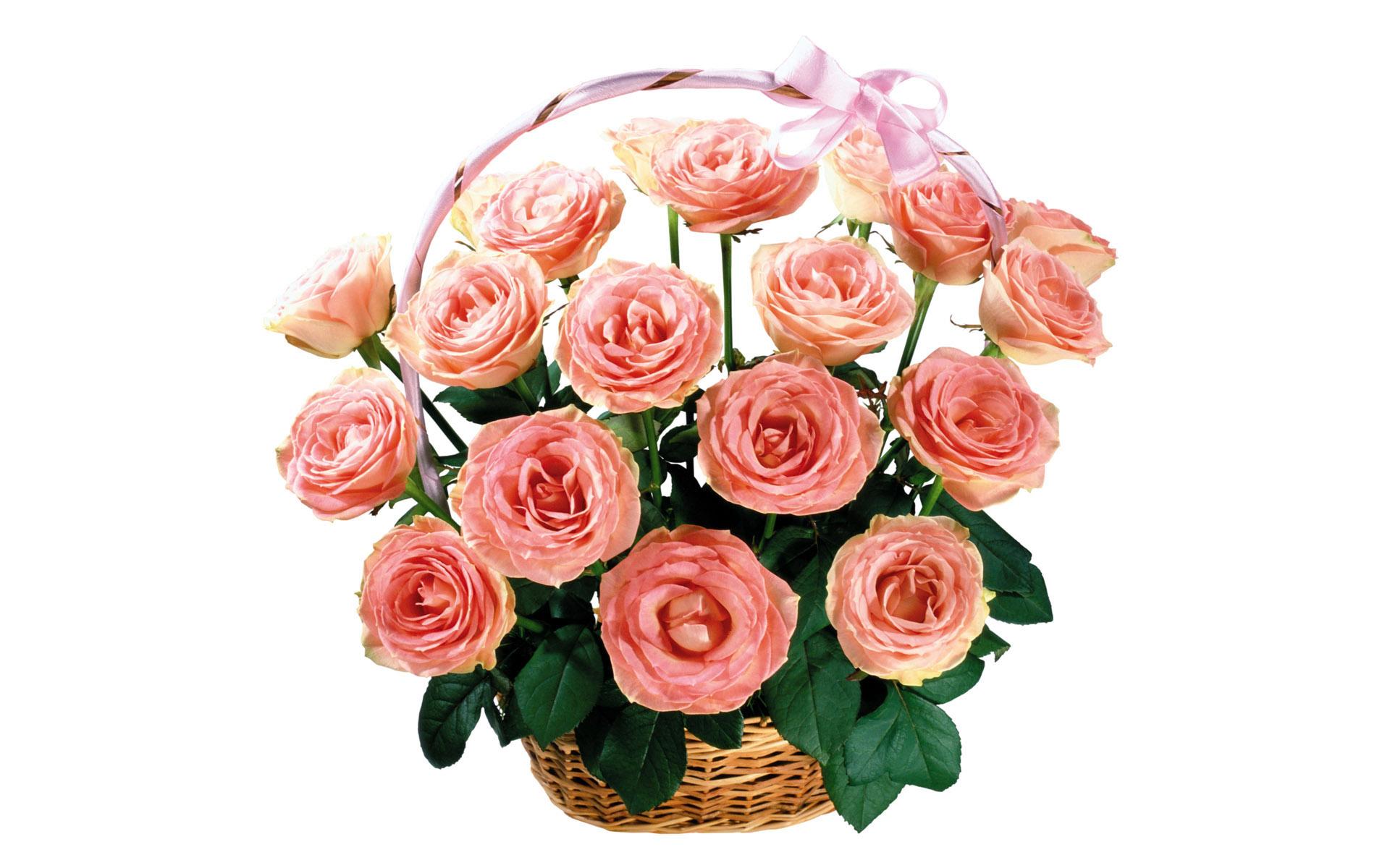 этого картинка букет роз с днем рождения на прозрачном фоне это удивительно, истории