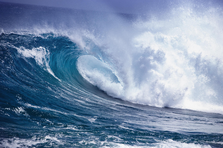 удивлялась очень красивые картинки океана интересующим