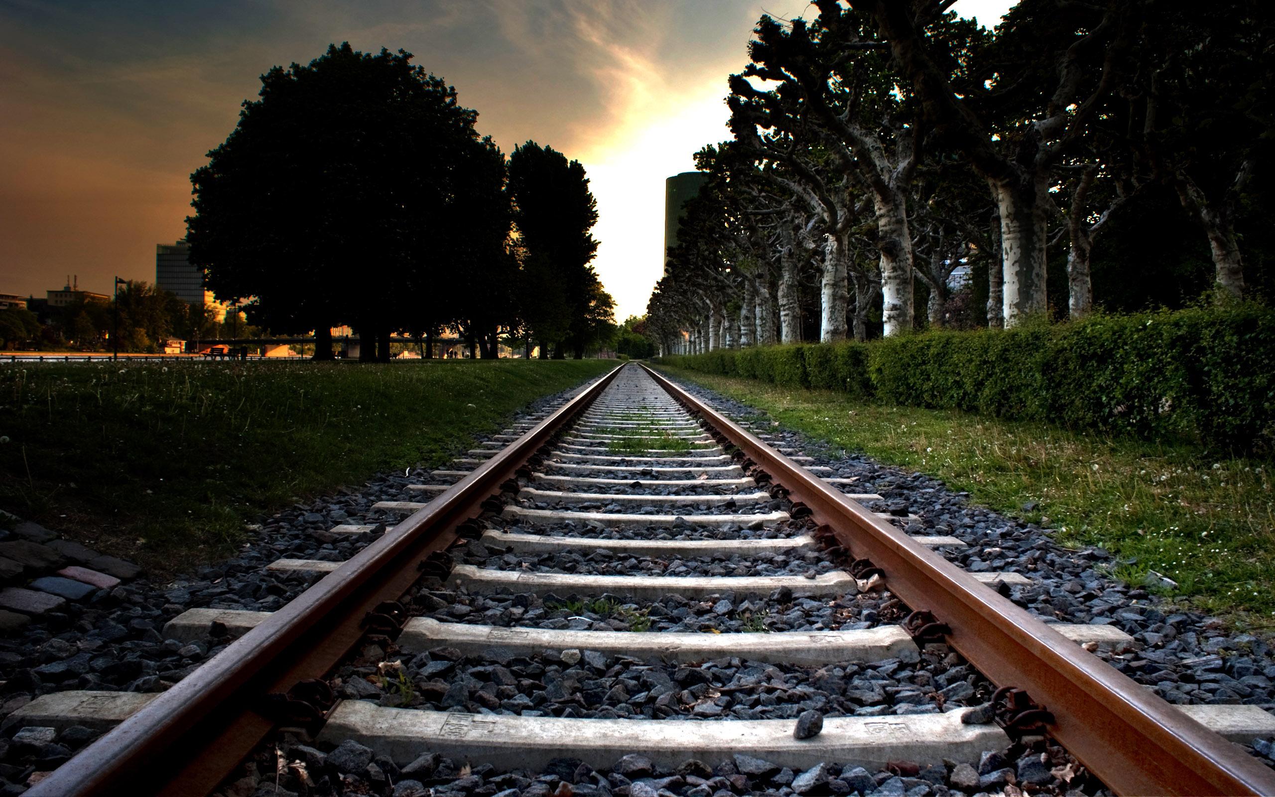 рельсы железная дорога деревья туннель  № 3118400 бесплатно