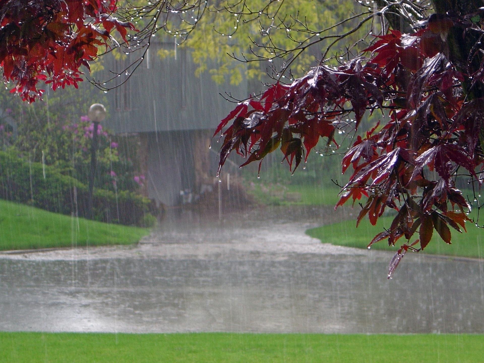 Лето одного дождя, на кровати трахает большегрудую бабу
