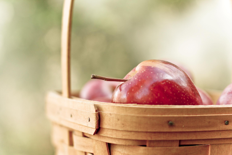 яблоки  № 164322 загрузить