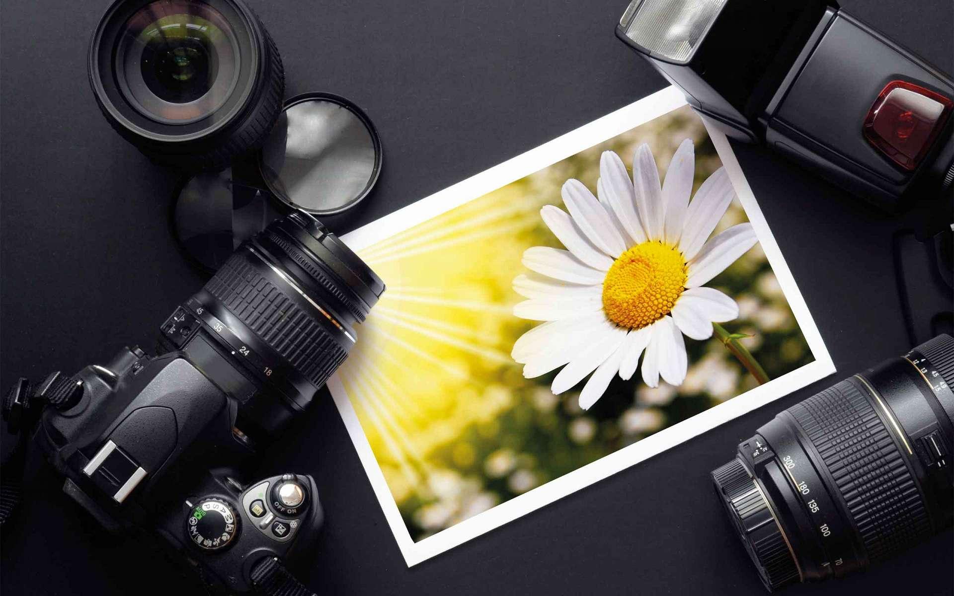 Как сделать качественный снимок на цифровом фотоаппарате