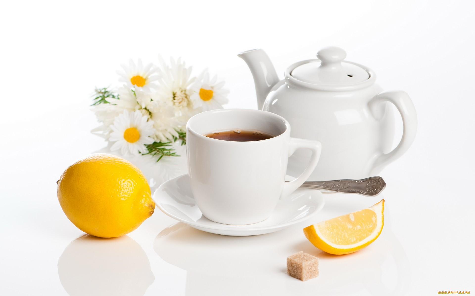 пирожные лимоны чай  № 3678287 загрузить
