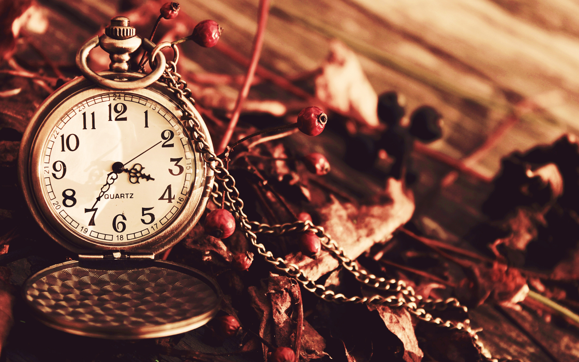 природа цветы часы  № 1520665  скачать