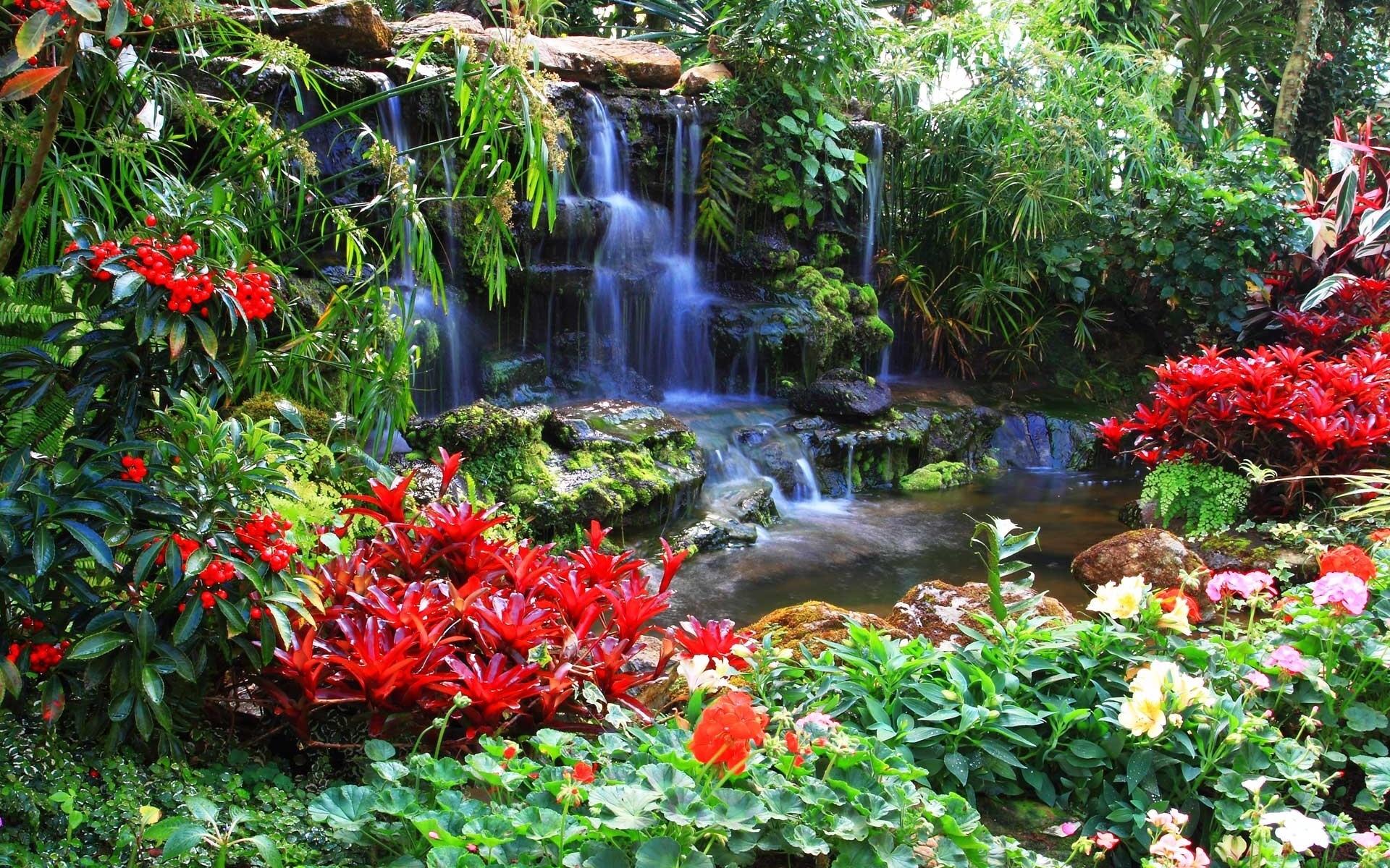 природа водопад  № 394142 загрузить