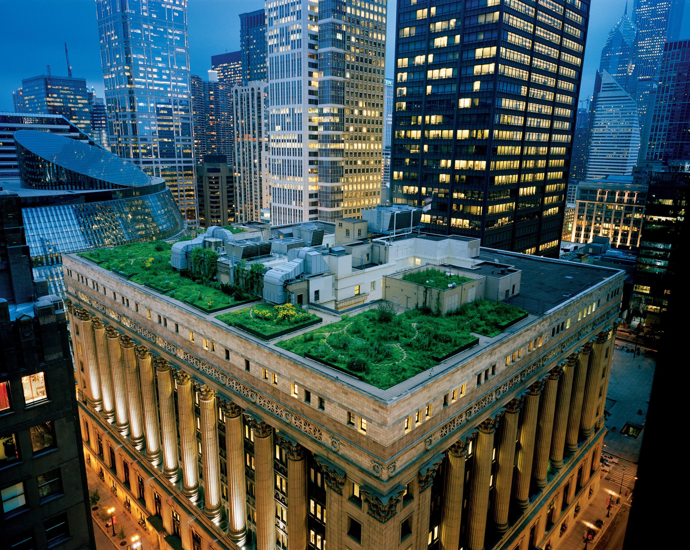 Книга зелень небоскребы без смс