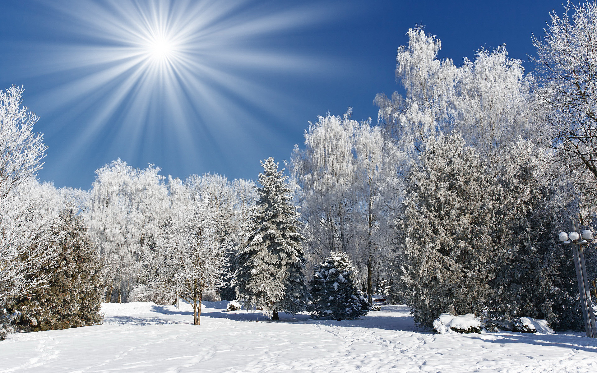 Открытки с природой зимы
