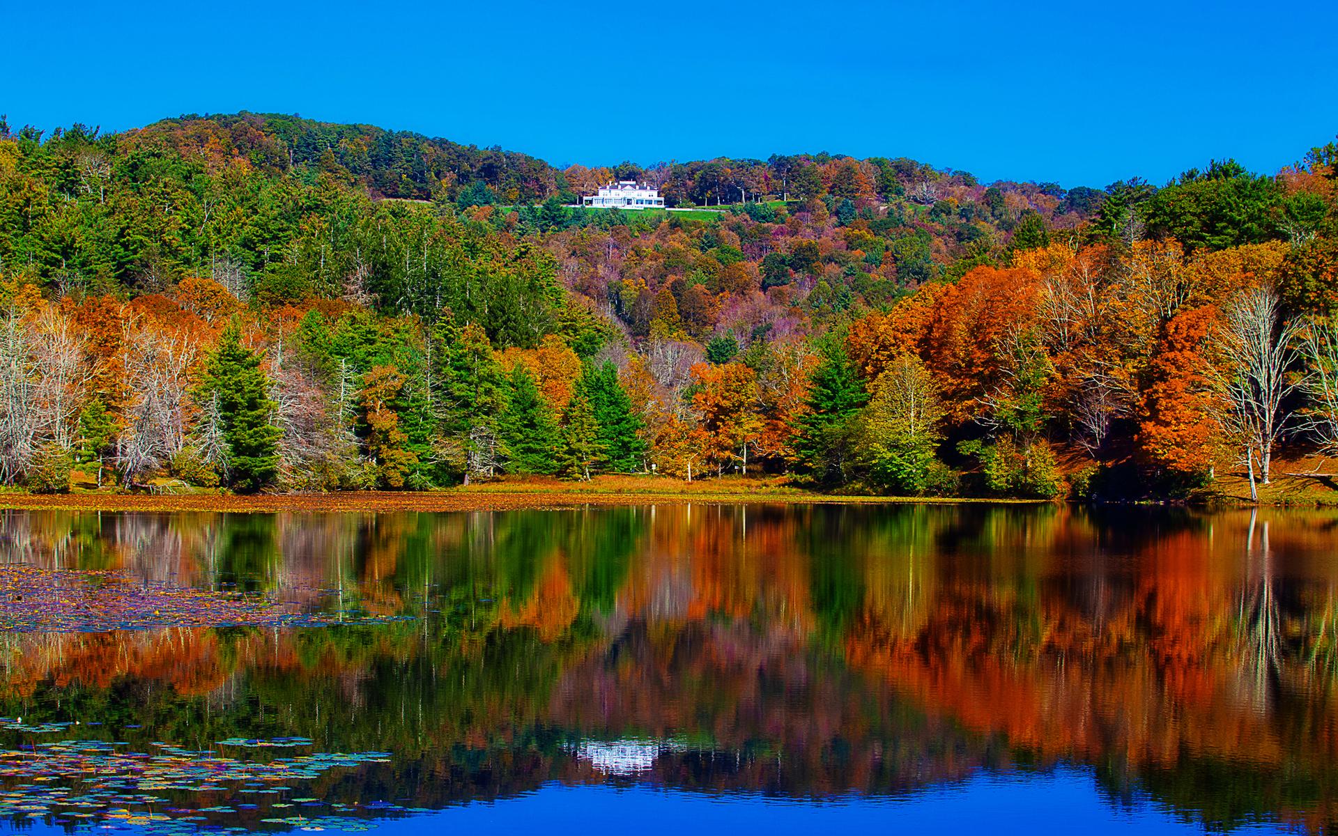 природа озеро дом лес деревья  № 2447905 бесплатно