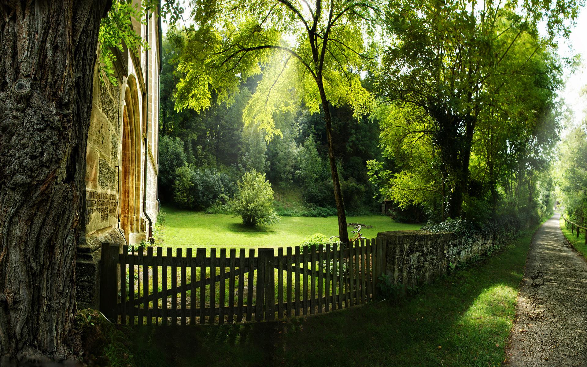 картинки лес и забор загар модели