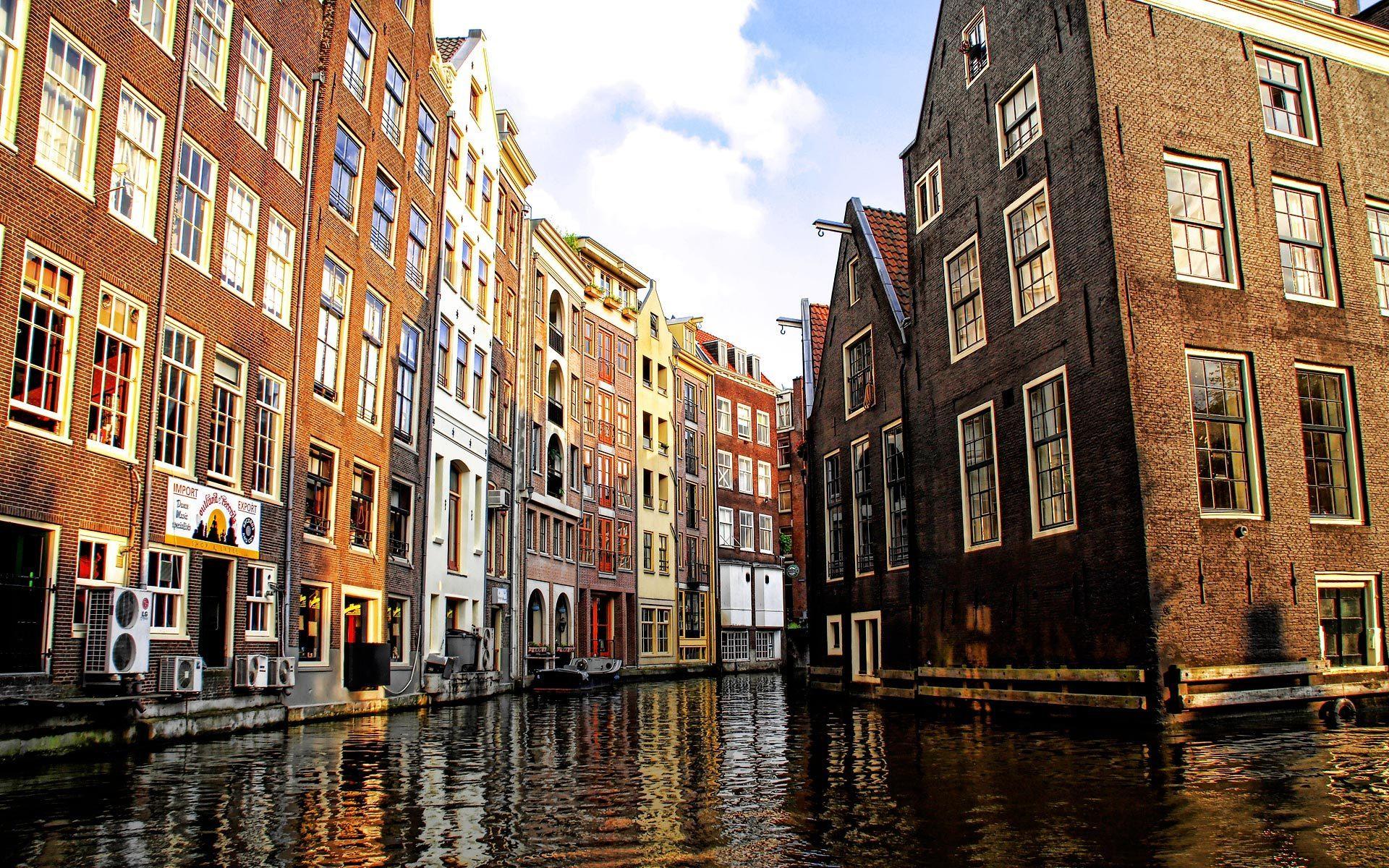 Доставка цветов и подарков в роттердаме нидерланды 63