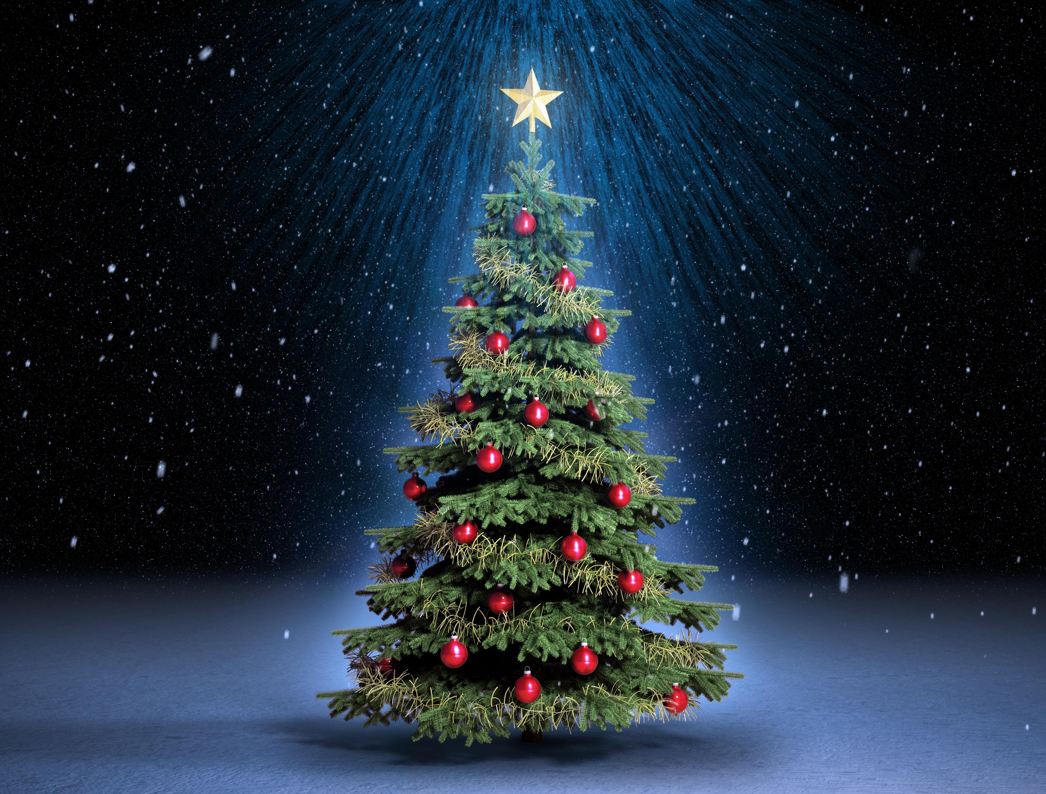 С новым годом новогодние елки