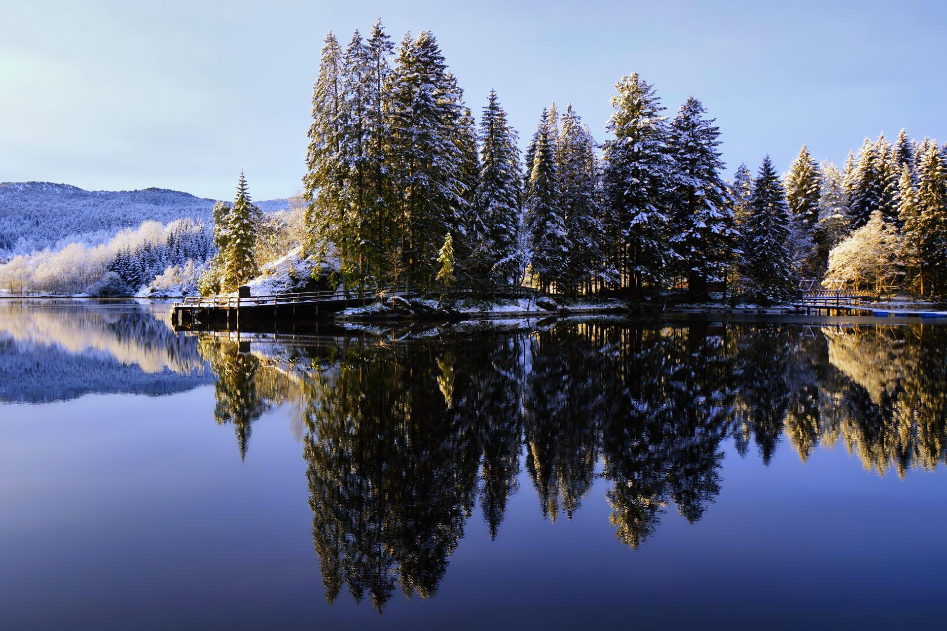 природа озеро отражение лес деревья снег зима бесплатно